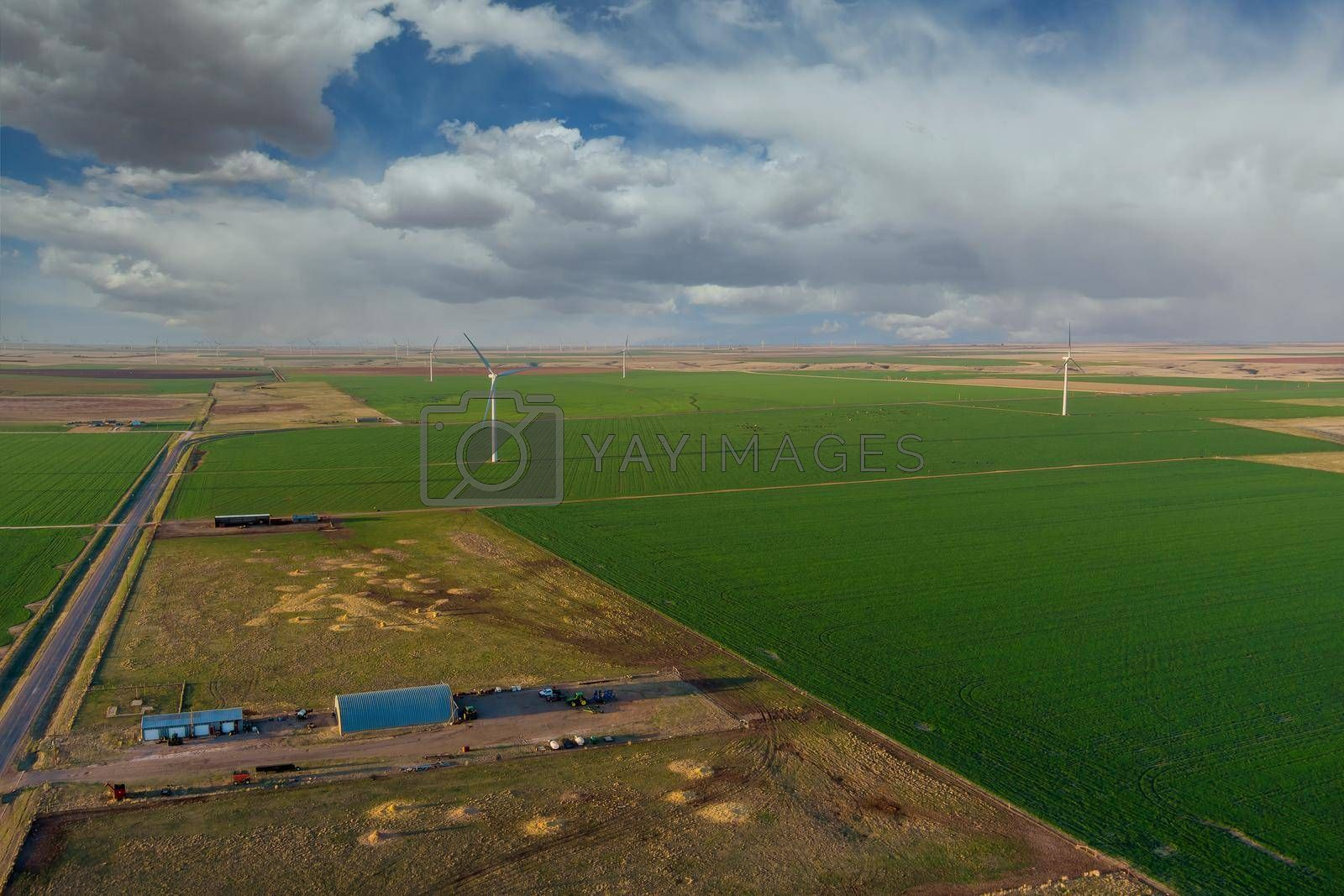 Wind turbines windmill energy farm in West Texas plains under a blue sky