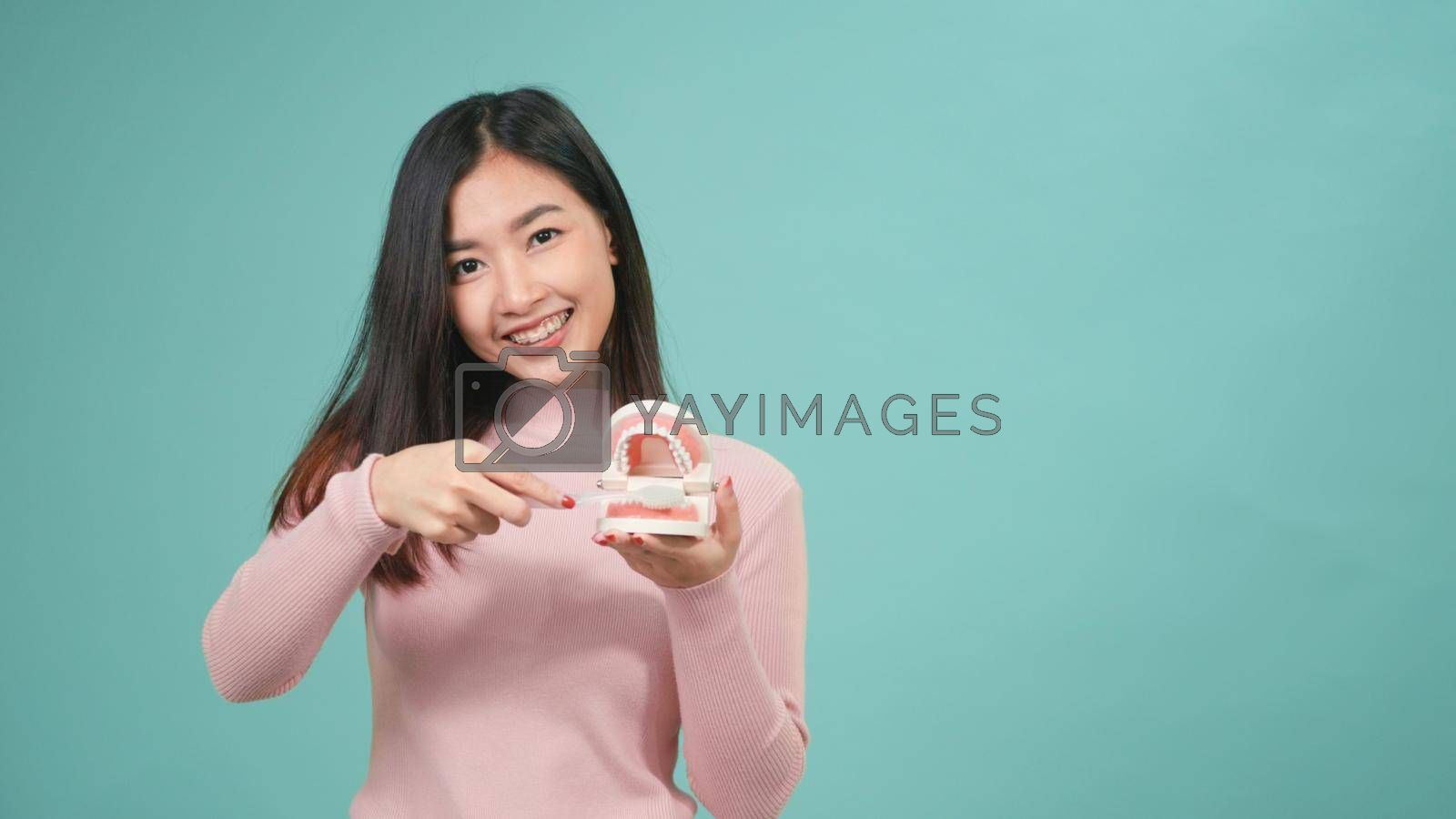 Asian young beautiful woman smile showing model how to clean the teeth with toothbrush properly and right, Female brush white teeth model isolated on blue background, dental hygiene and health concept