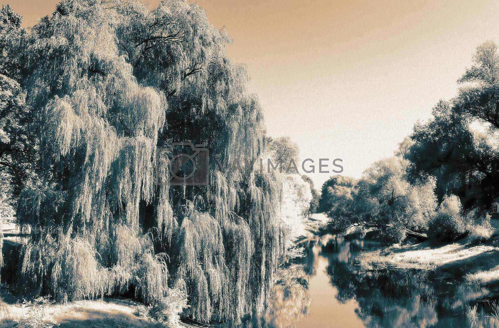 Landscape: small river and the trees on the Bank. The effect of infrared film by georgina198