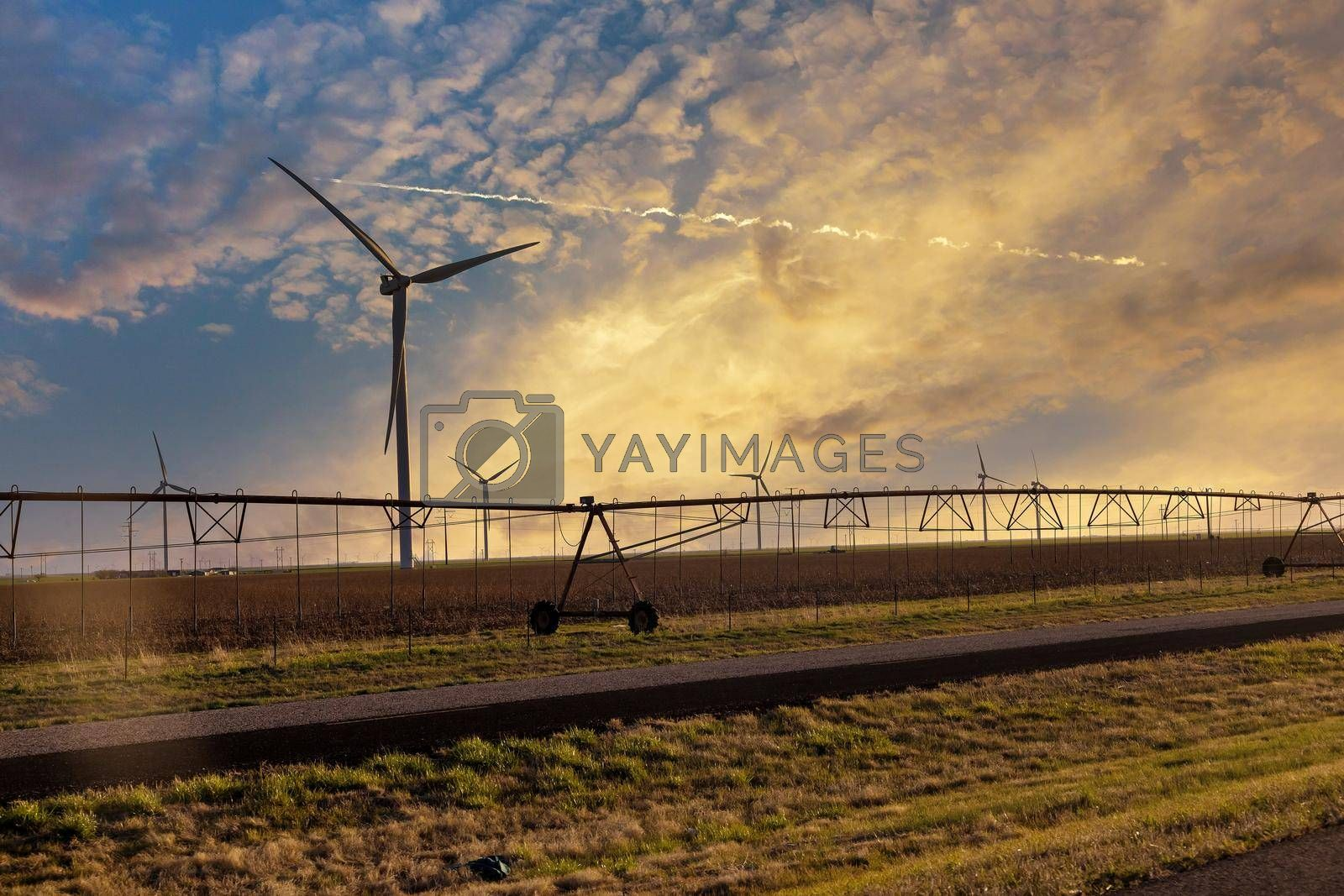 Wind turbines windmill energy farm the beautiful sunset with irrigation pivot system in Texas USA