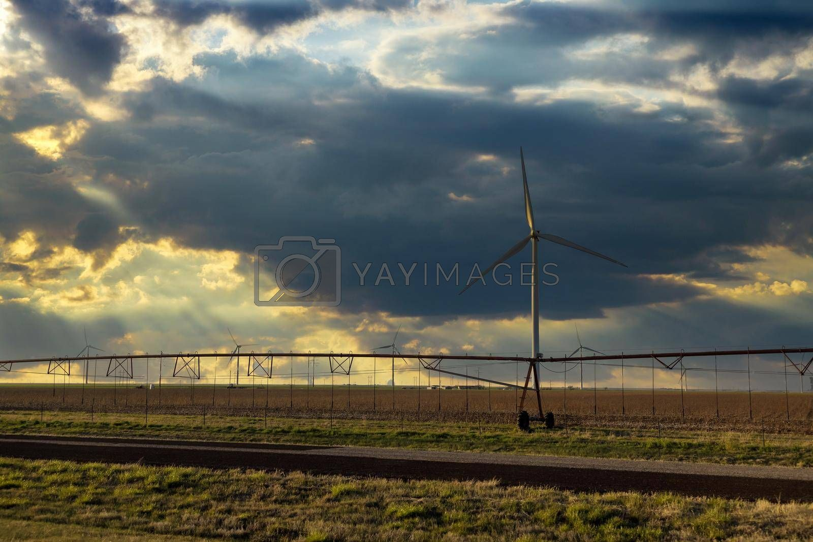 Agriculture irrigation machine field landscape with wind turbines windmill energy farm the beautiful sunset in Texas US