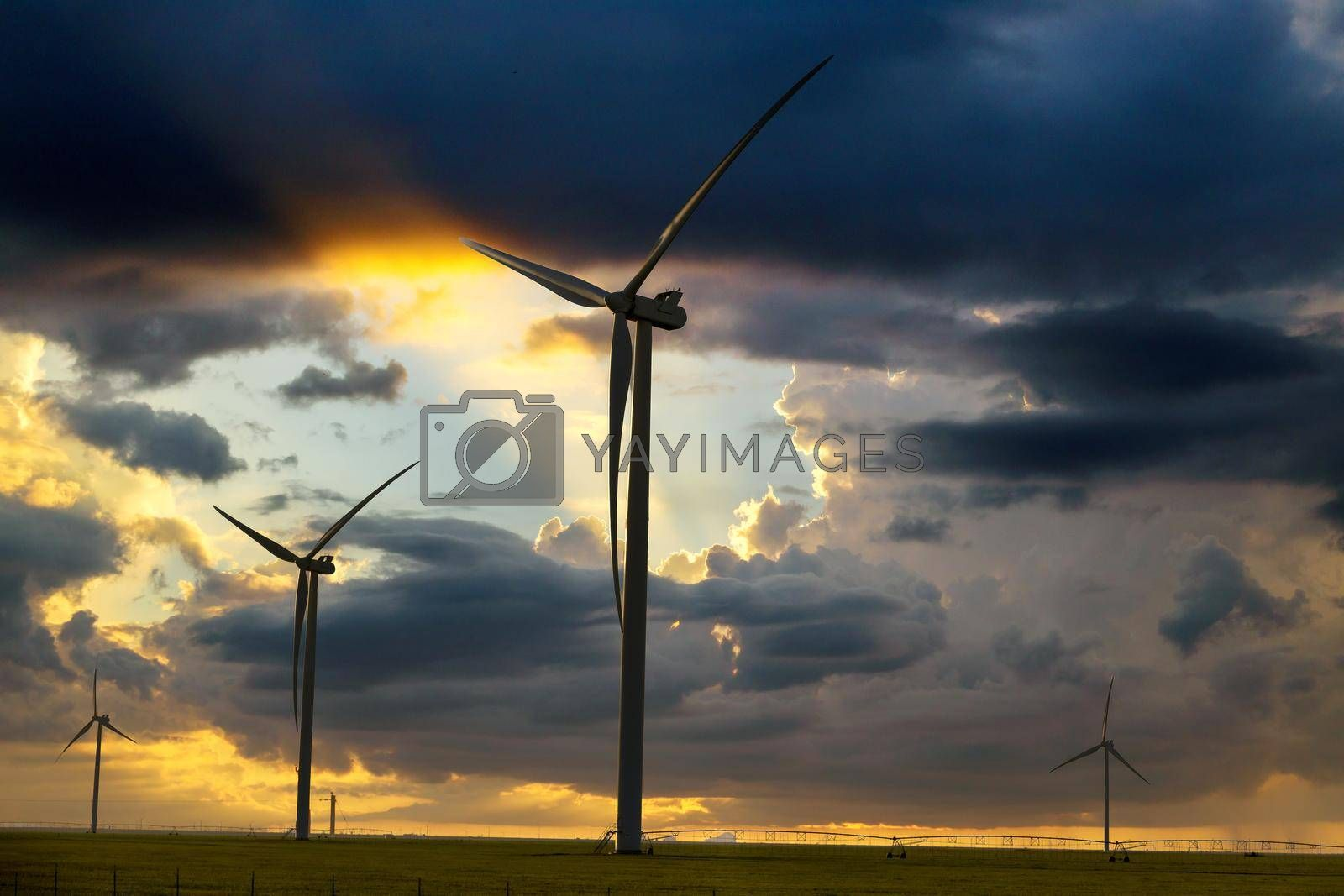 Wind turbines, wind farms silhouette at sunset with irrigation pivot water system on a farm field in Texas USA