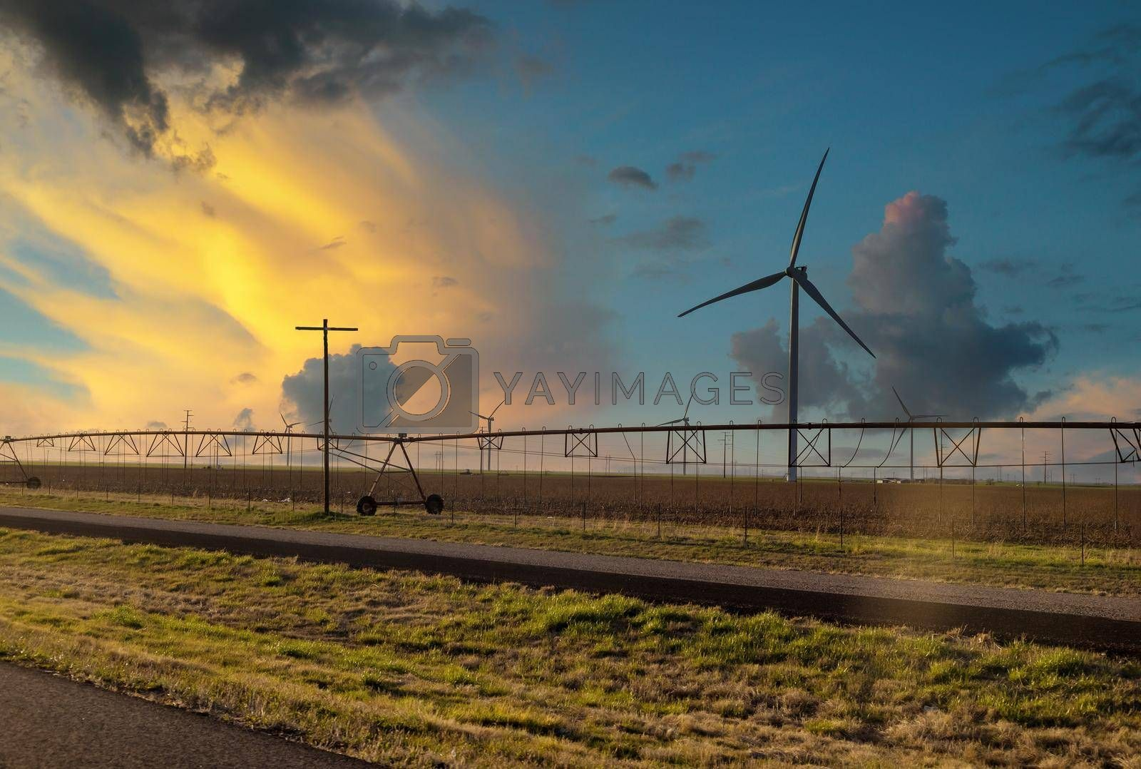 Water sprinkler system in a green field at sunset with wind turbines windmill energy farm in Texas US