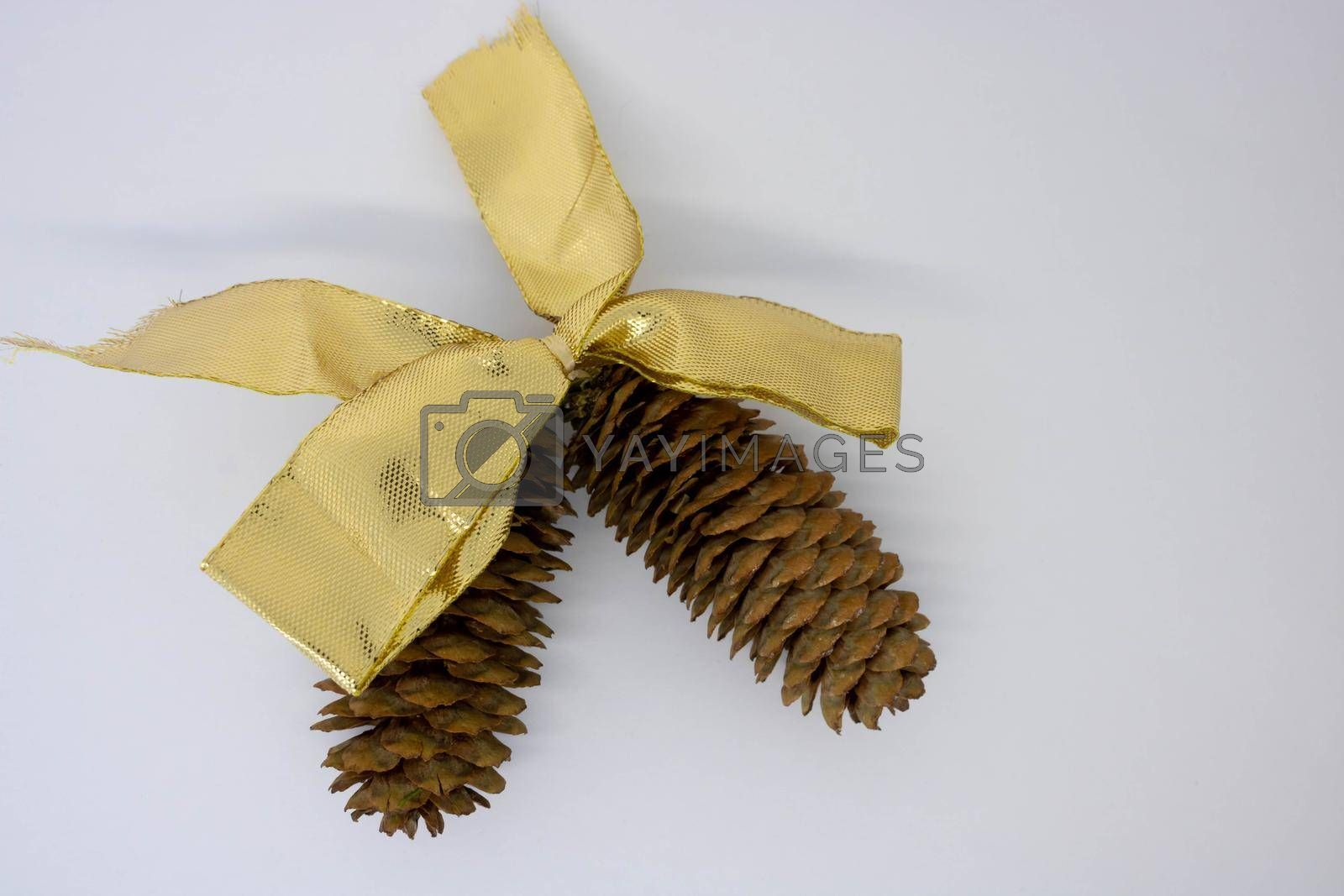 A gold bow and two brown fir cones on a white background.The concept of the New Year.Place for the text.