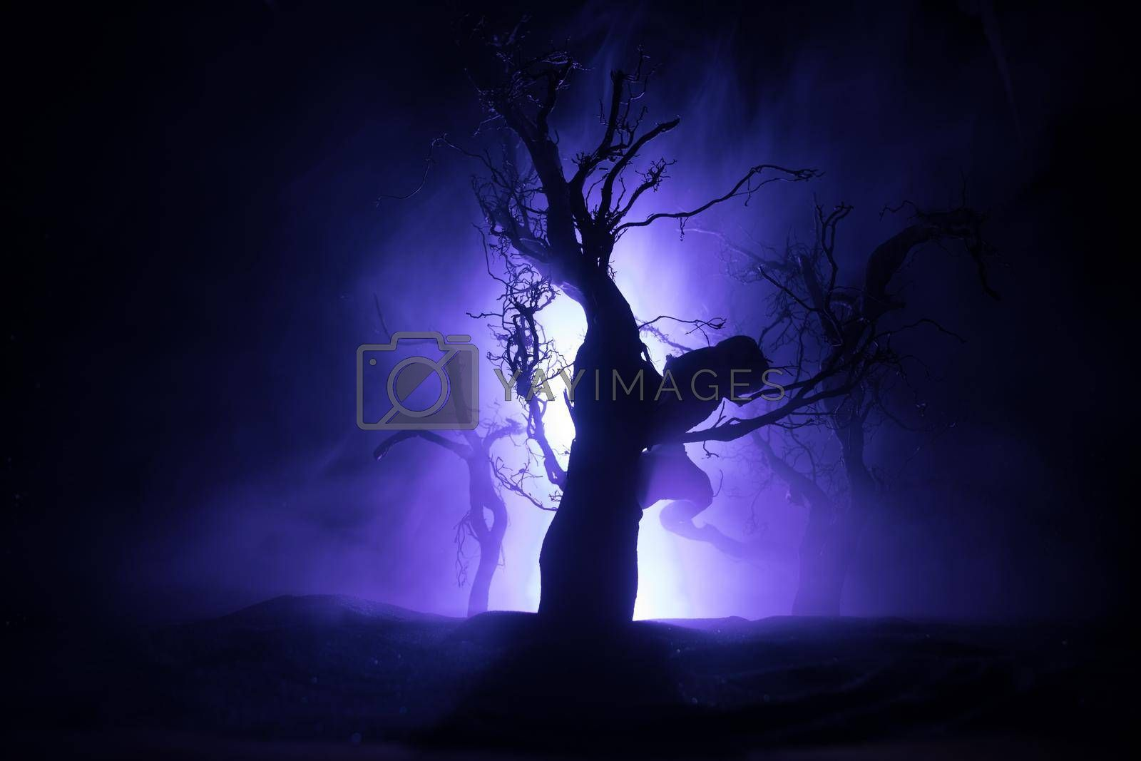 Spooky dark landscape showing silhouettes of trees in the swamp on misty night. Night mysterious forest in cold tones . Tree branches against the full moon and dramatic cloudy night sky