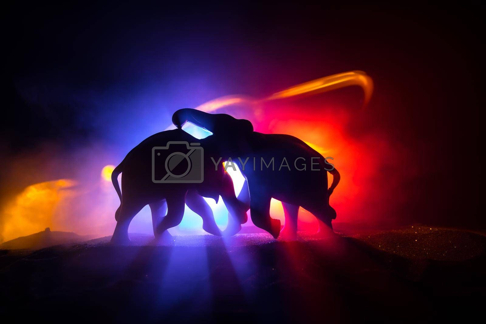 Elephant fighing silhouettes on fire background or Two elephant bulls interact and communicate while play fighting. Creative table decoration with colorful backlight with fog. Selective focus