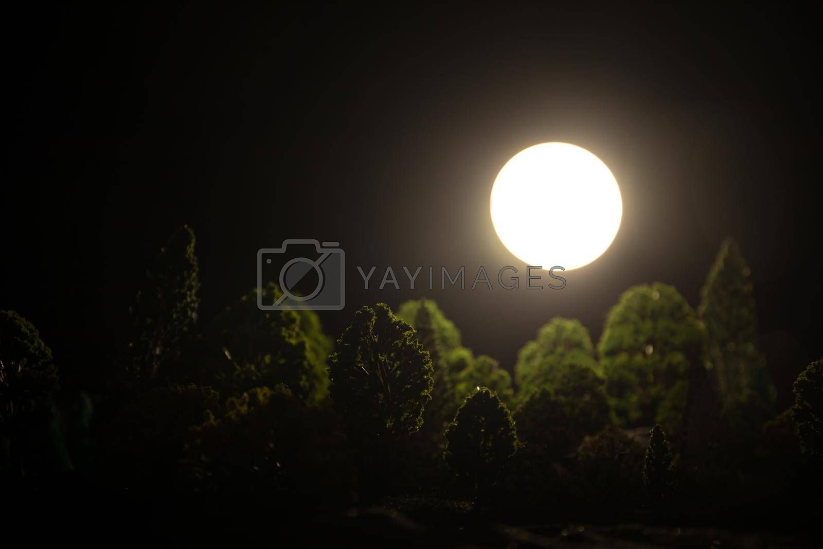 Full moon over the forest at night. Scenic night landscape of country road at night with large moon. Miniature decoration. Selective focus