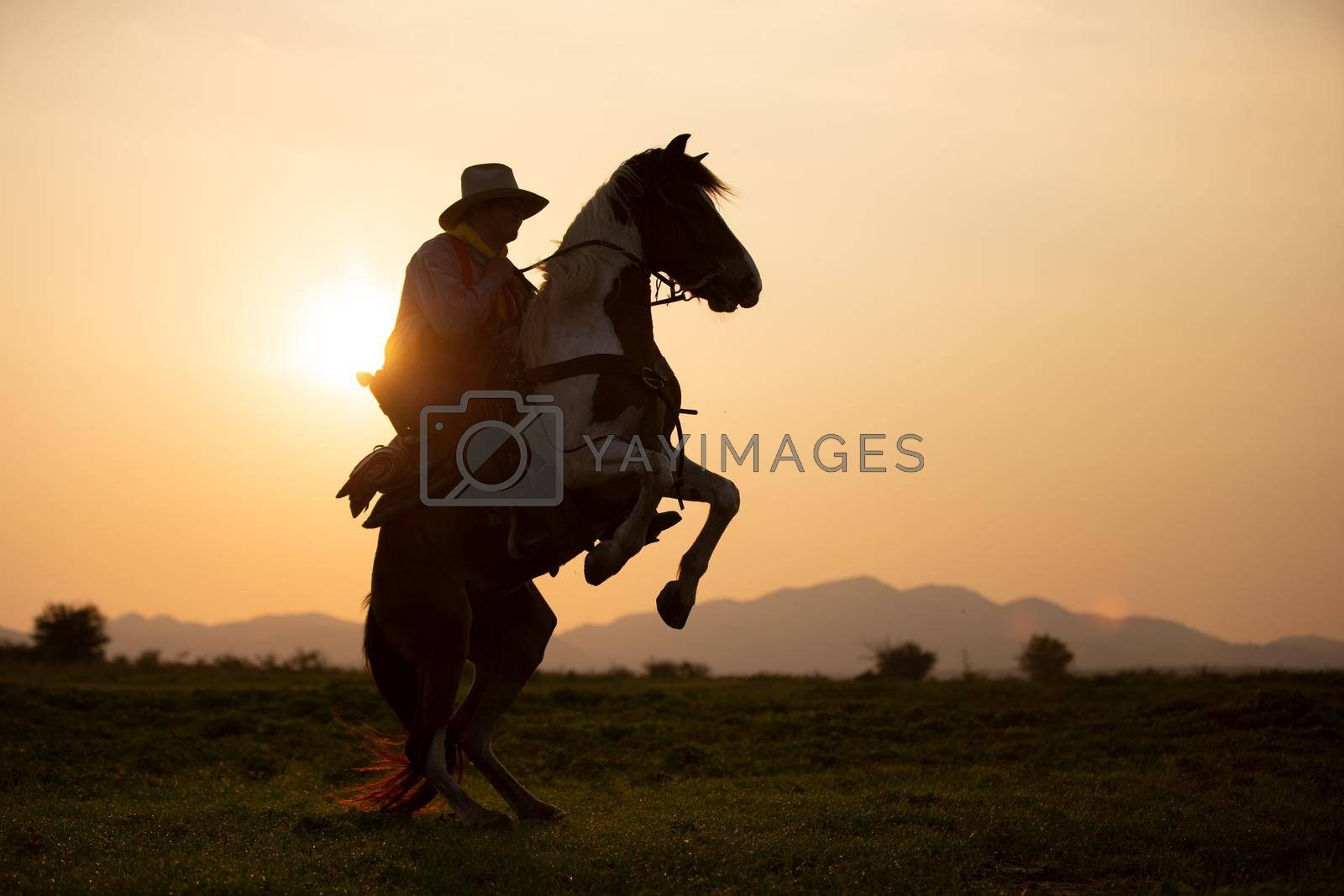 cowboy on horseback against a beautiful sunset, cowboy and horse at first light,mountain, river and lifestyle with natural light background