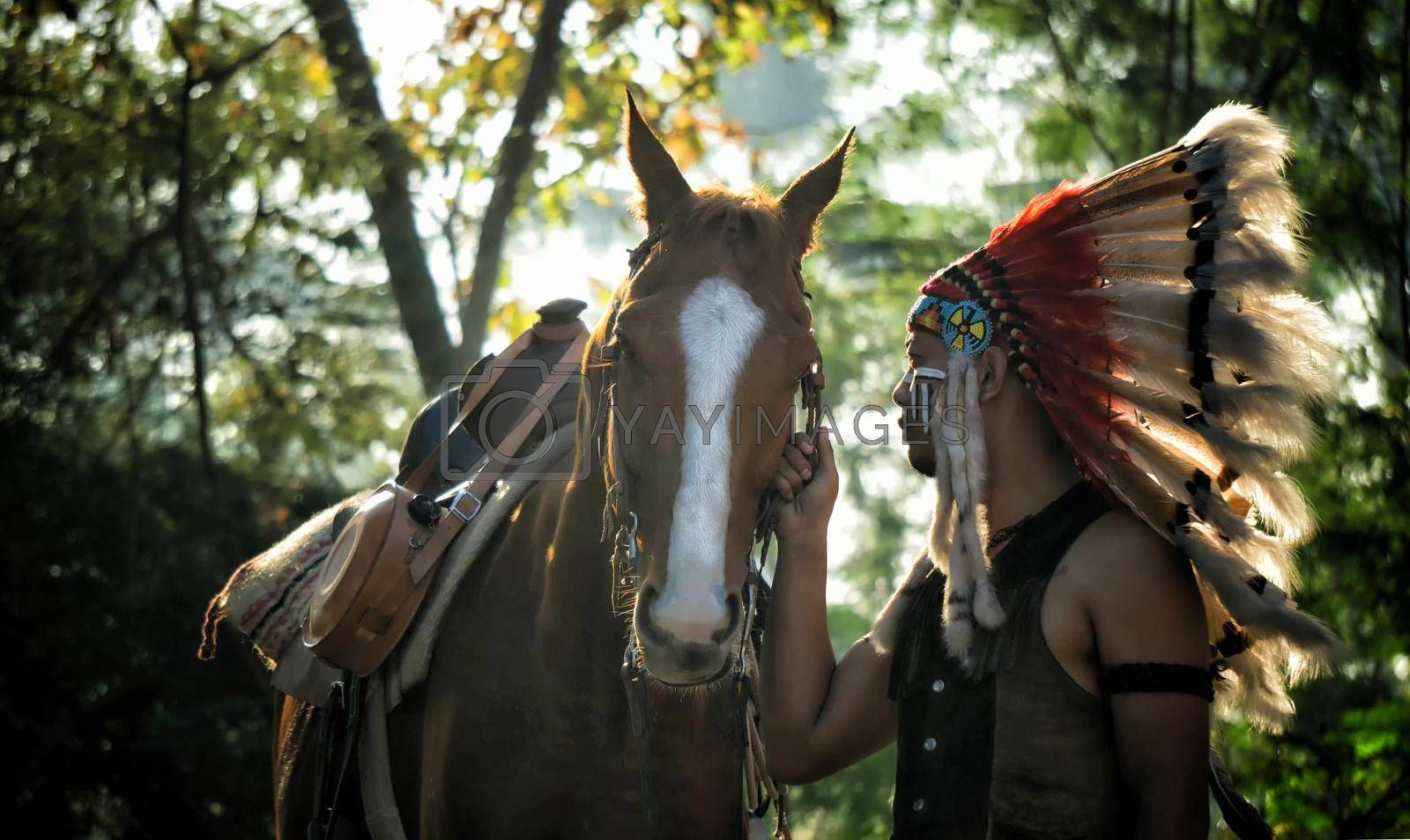 Royalty free image of American Indian warrior, chief of the tribe. man with feather headdress and tomahawk, horse by chuanchai