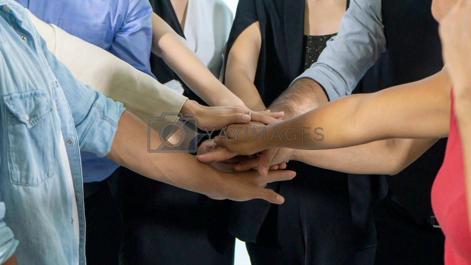 Royalty free image of Close up on hands of business people join together on unity concept by chuanchai