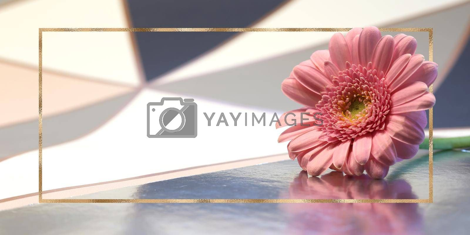 Beautiful pink flowers on pastel abstract background. spring summer gerbera flower in gold frame. Mock up. Place for text