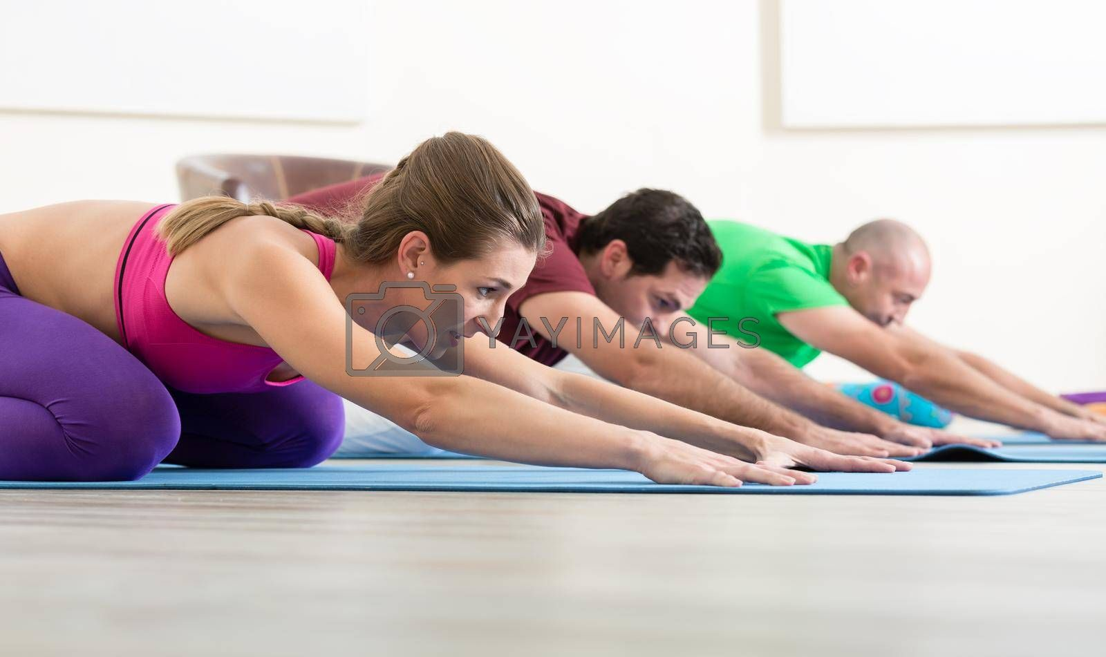 Group of sporty people practicing yoga lesson with instructor