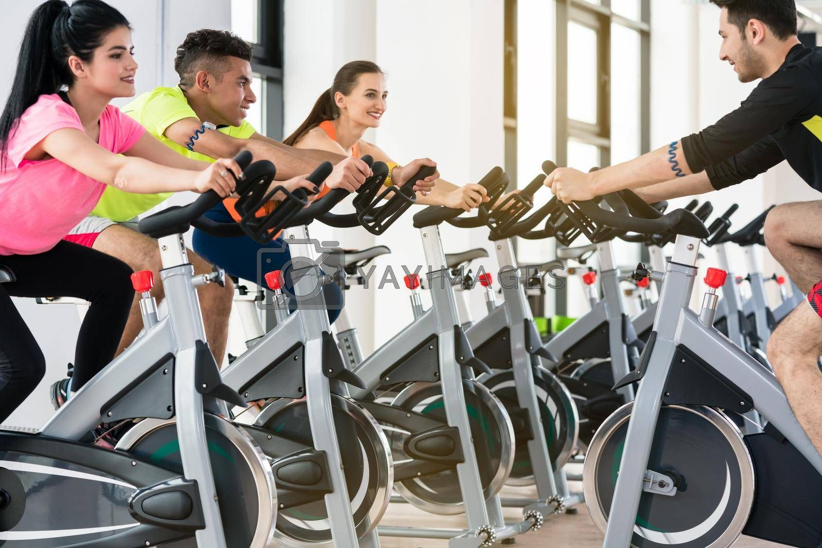 People cycling in row at gym