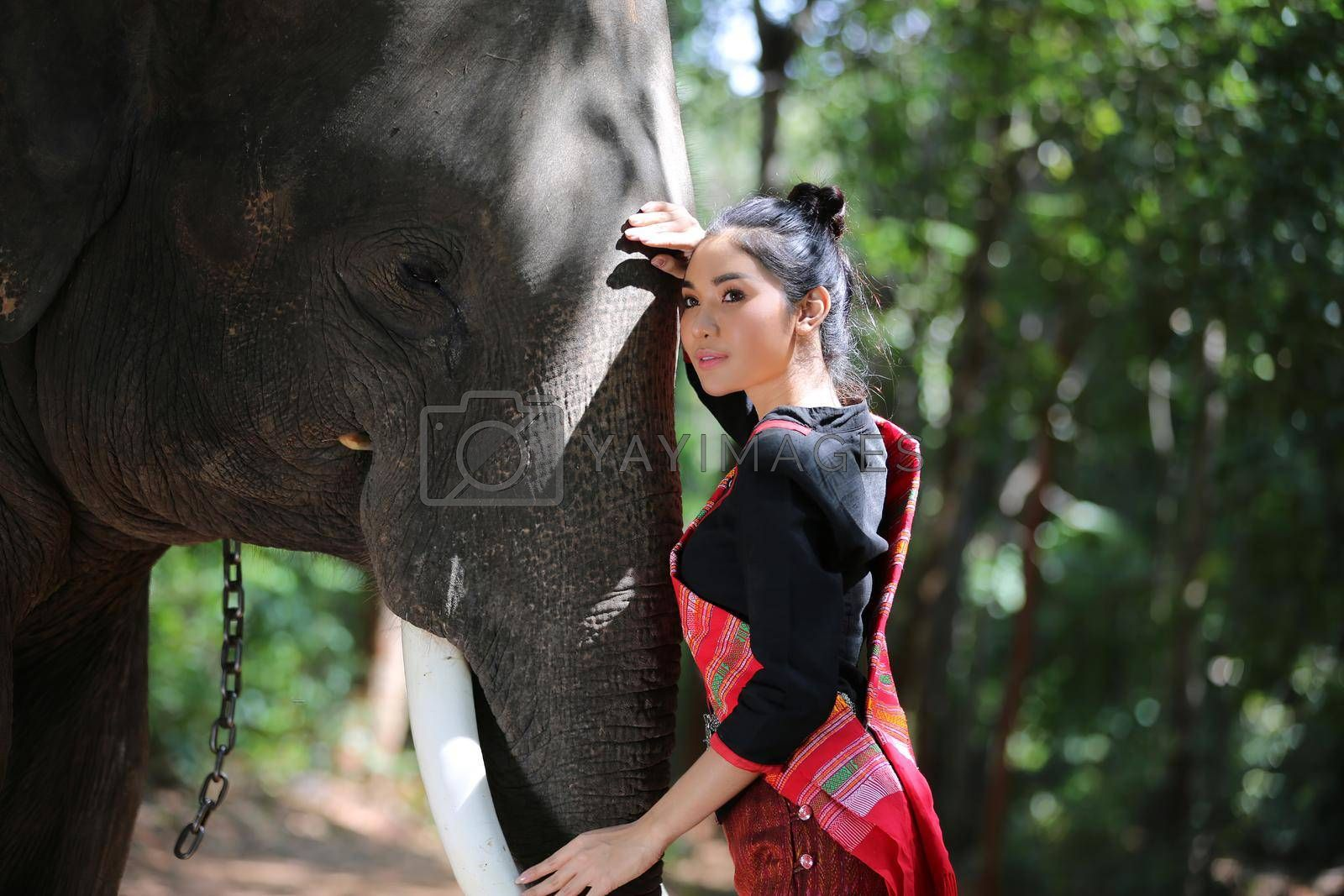 Portrait of Beautiful rural Thai woman wear Thai dress with elephant in Surin Province, Thailand