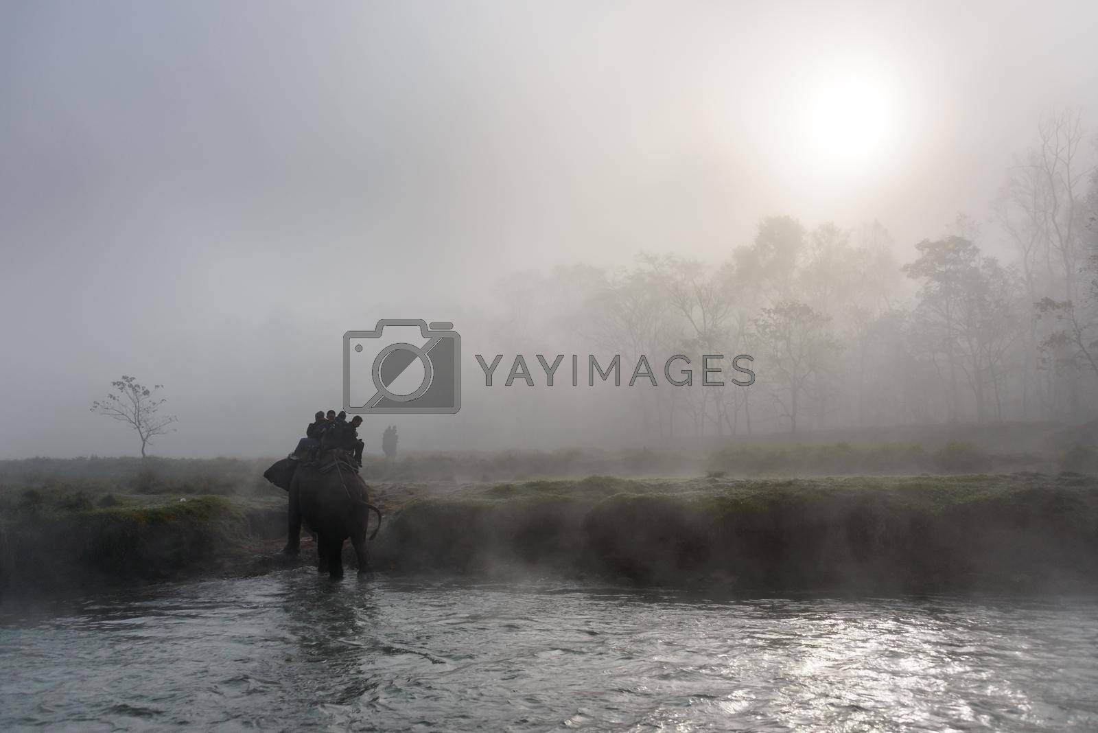 SAURAHA, NEPAL - CIRCA DECEMBER 2014: Tourists doing an elephant safari in Chitwan National Park.
