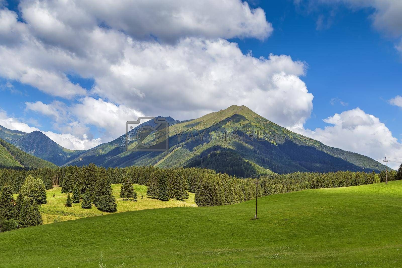 Royalty free image of landscape in Styria, Austria by borisb17