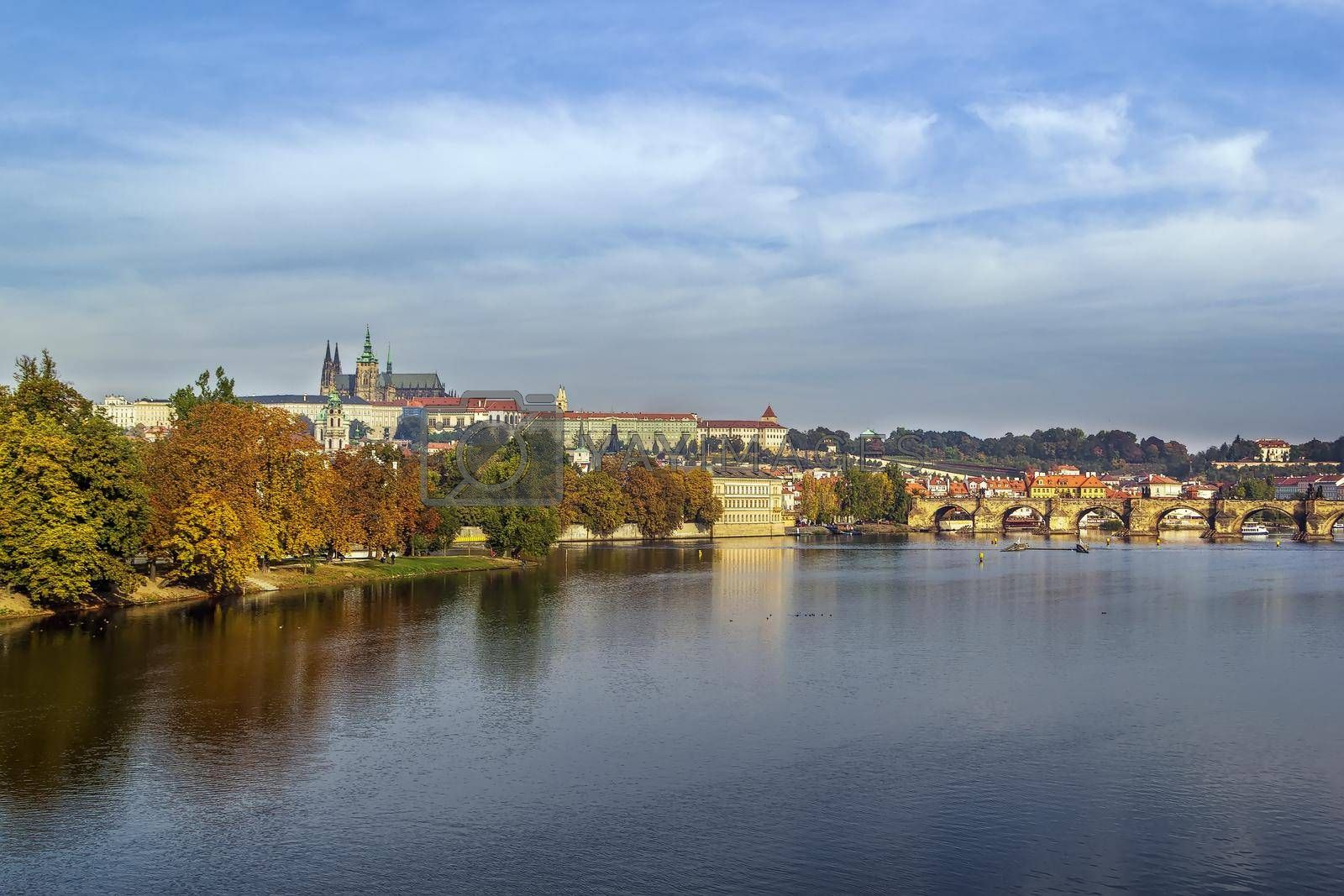 Royalty free image of view of Prague castle by borisb17