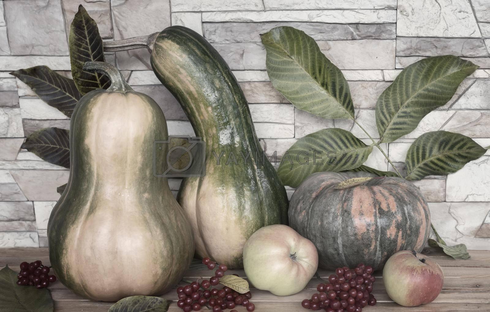 Royalty free image of Autumn still life: pumpkins, apples, viburnum berries by georgina198
