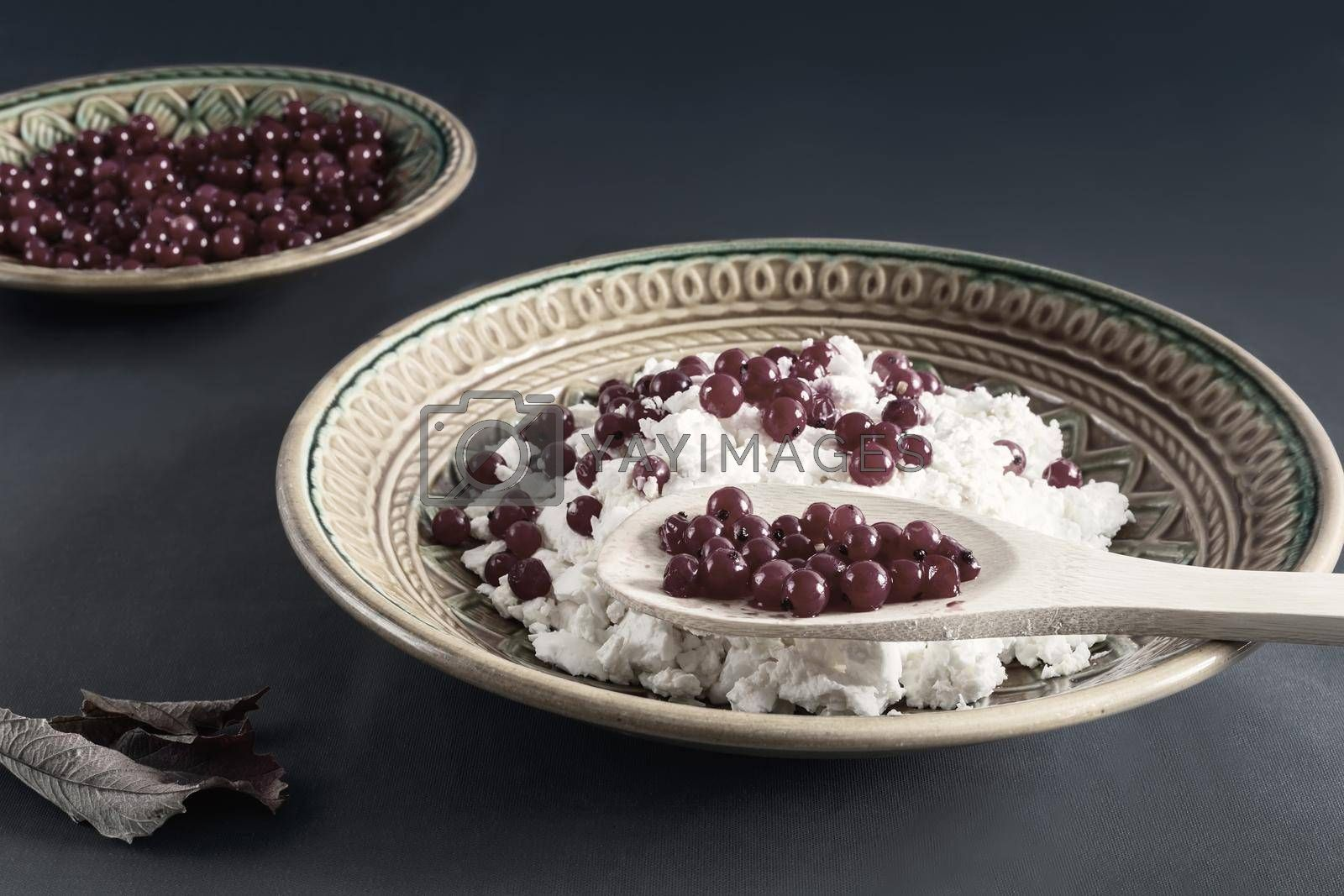 Royalty free image of Delicious cottage cheese with red currant berries by georgina198