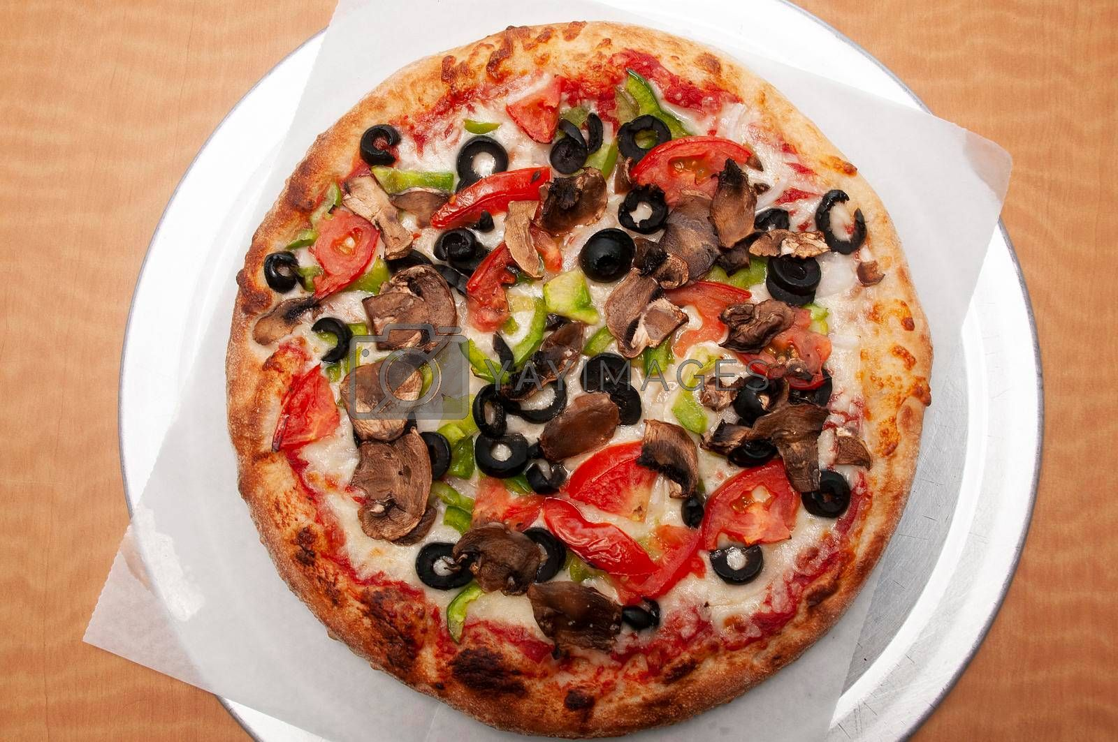 Delicious tomato sauce cheese covered hot and tasty vegetarian pizza pie