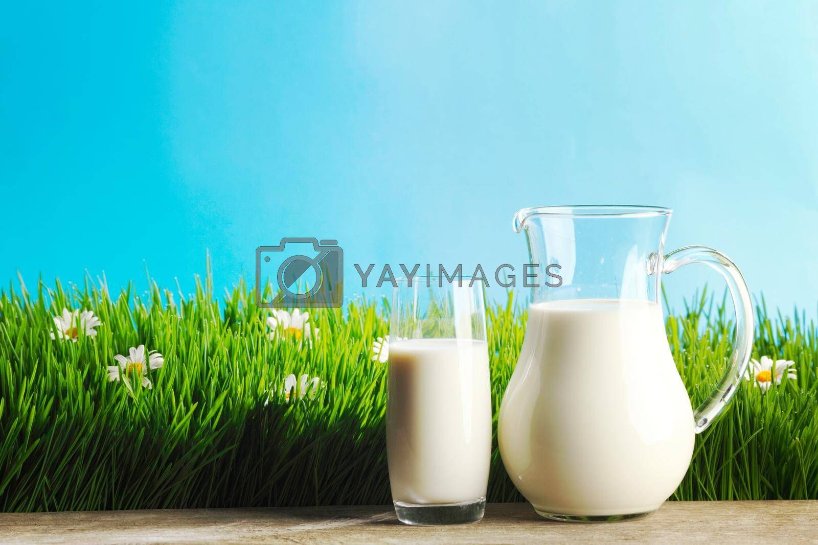 Royalty free image of Glass of milk and jar on flower meadow by Yellowj