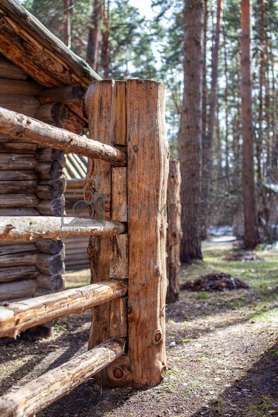 Large wooden fence posts that enclose an old wooden house in the forest. How people built houses and fences in the past. Ecological construction and materials.