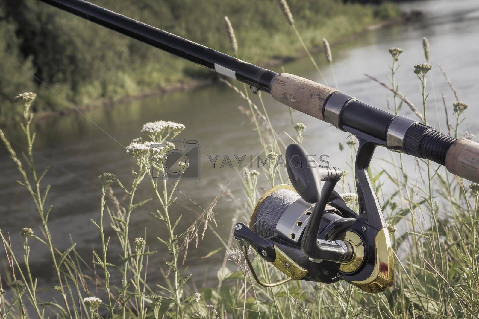 Royalty free image of Feeder - English fishing tackle for catching fish. by georgina198