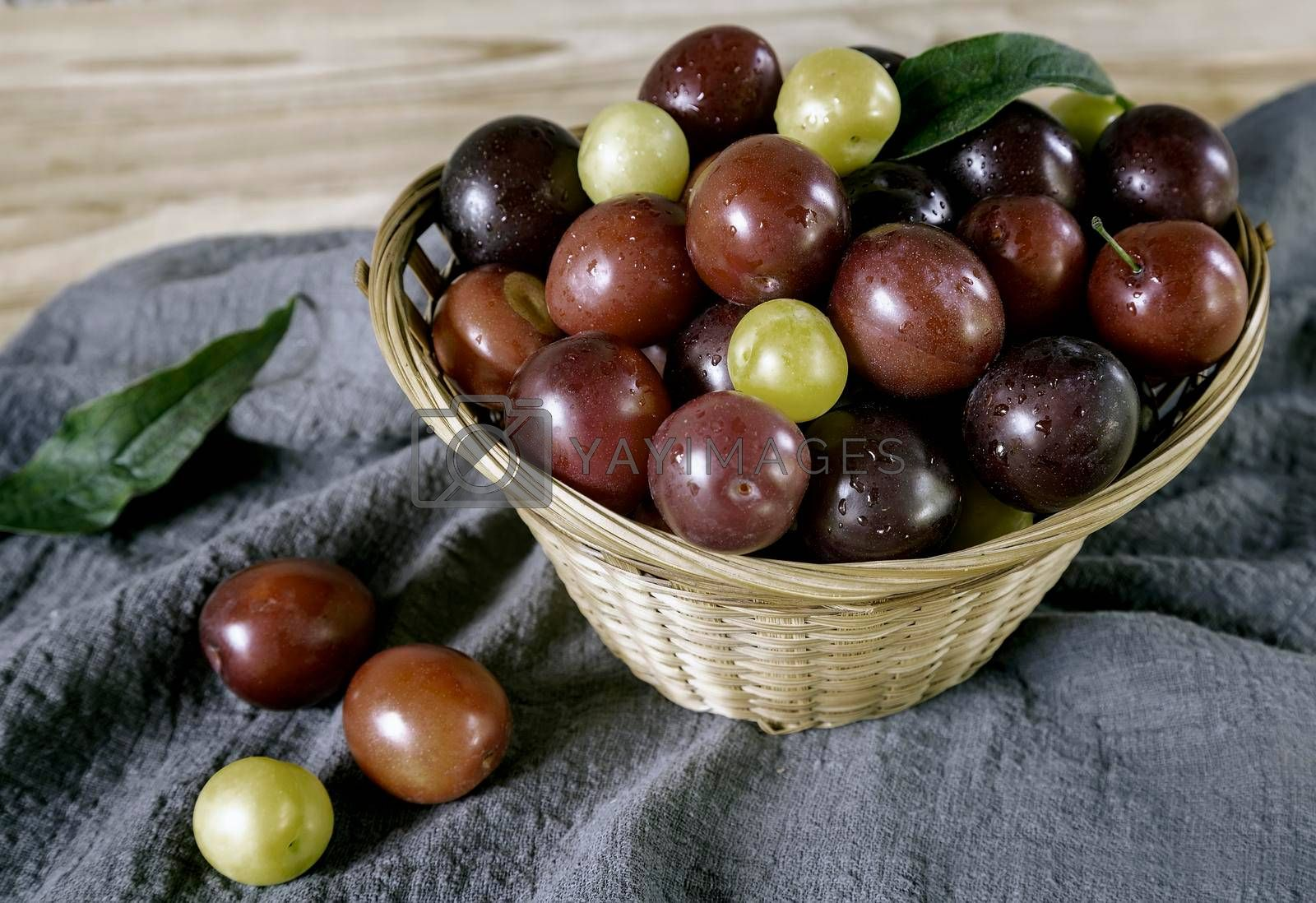 Royalty free image of Large ripe plums in a wicker basket. by georgina198