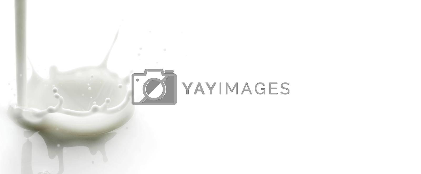 Royalty free image of Pouring milk splash by Yellowj