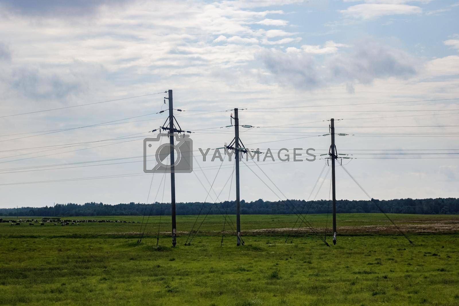 Electricity poles in a green field in summer and blue cloudy sky
