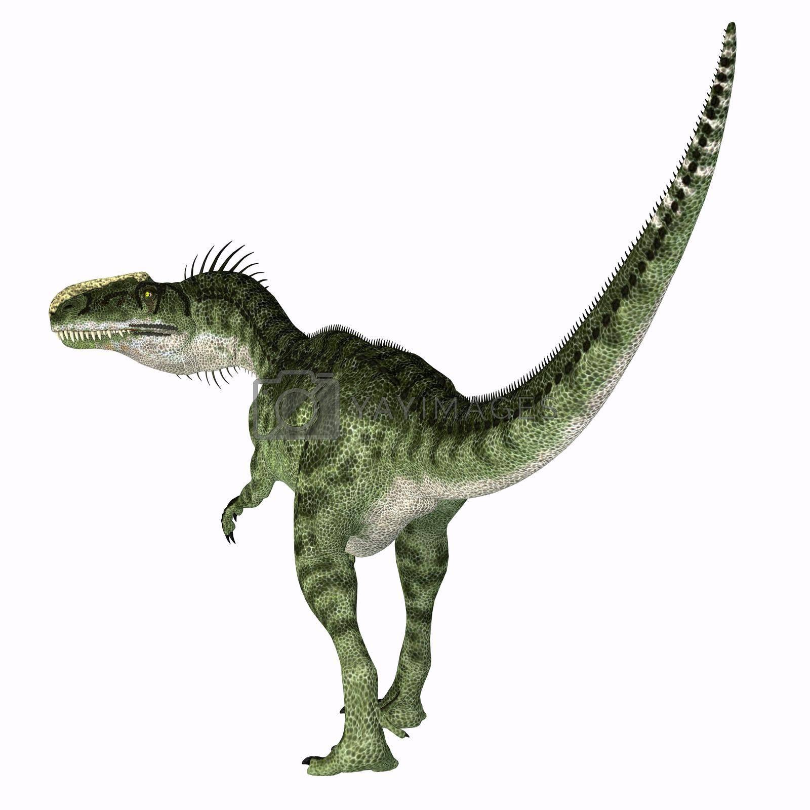 Royalty free image of Monolophosaurus Dinosaur Tail by Catmando