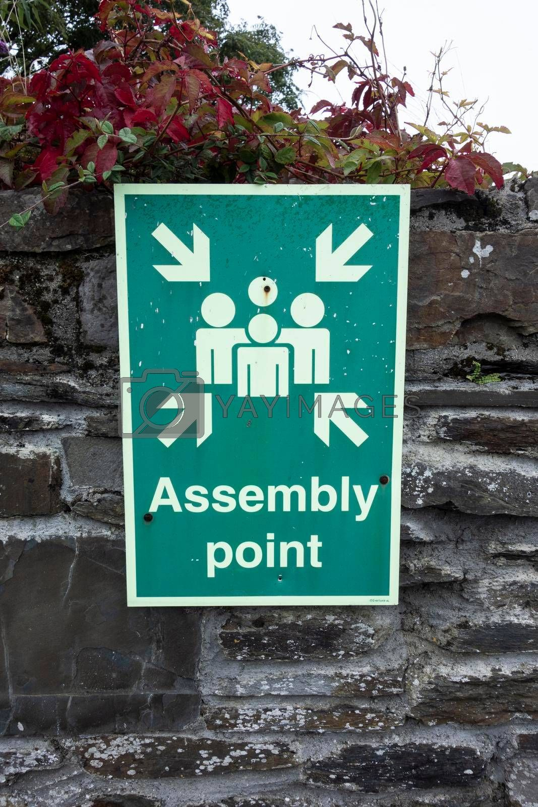 fire safety assembly point sign, pictogram of people on green background