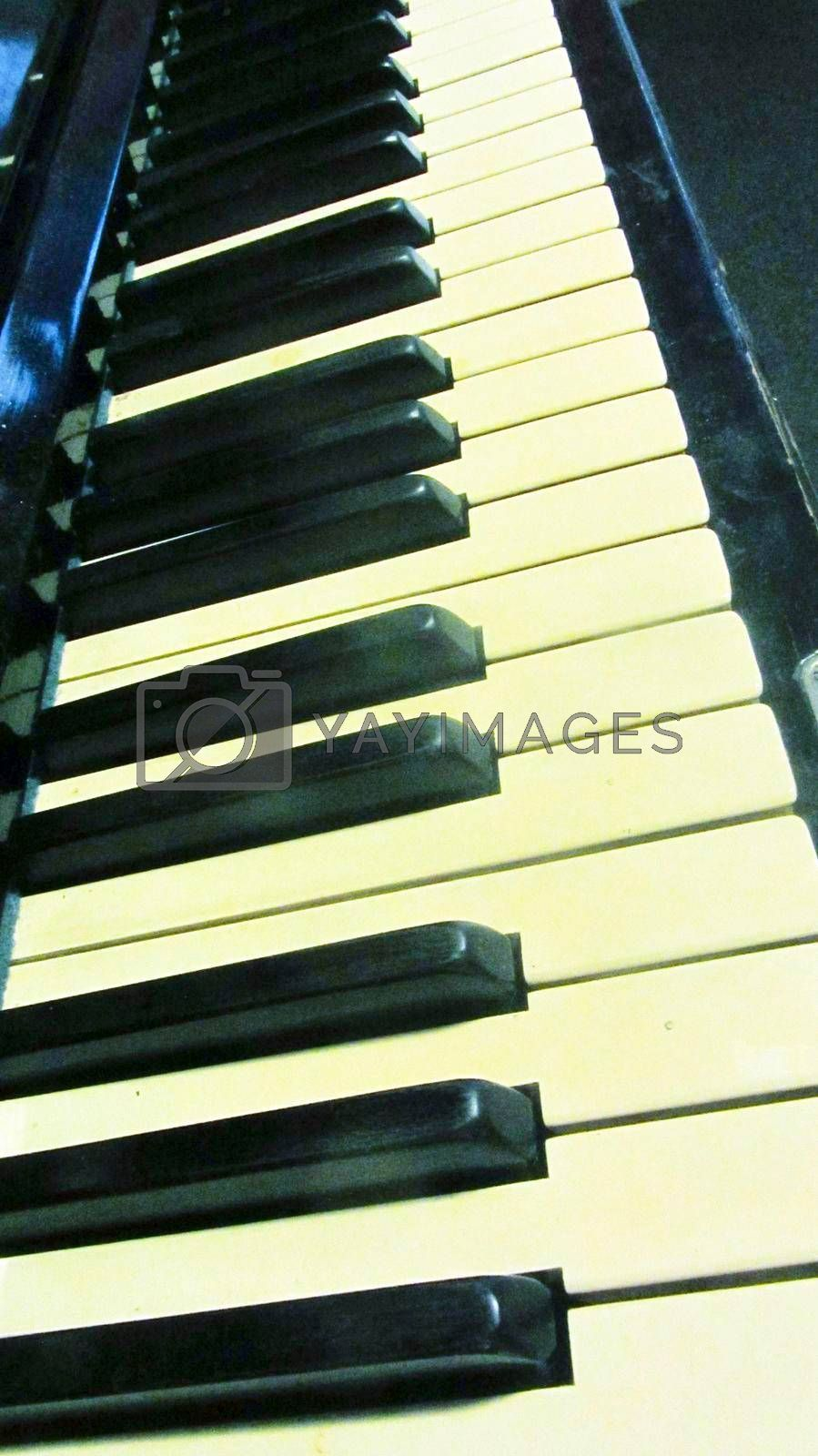 the keys of a piano, a stringed musical instrument