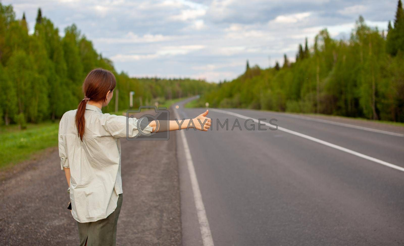 The girl stops the car on the highway with her hand. Stylish woman on the road stops the car go on a journey. A road in the middle of the forest.