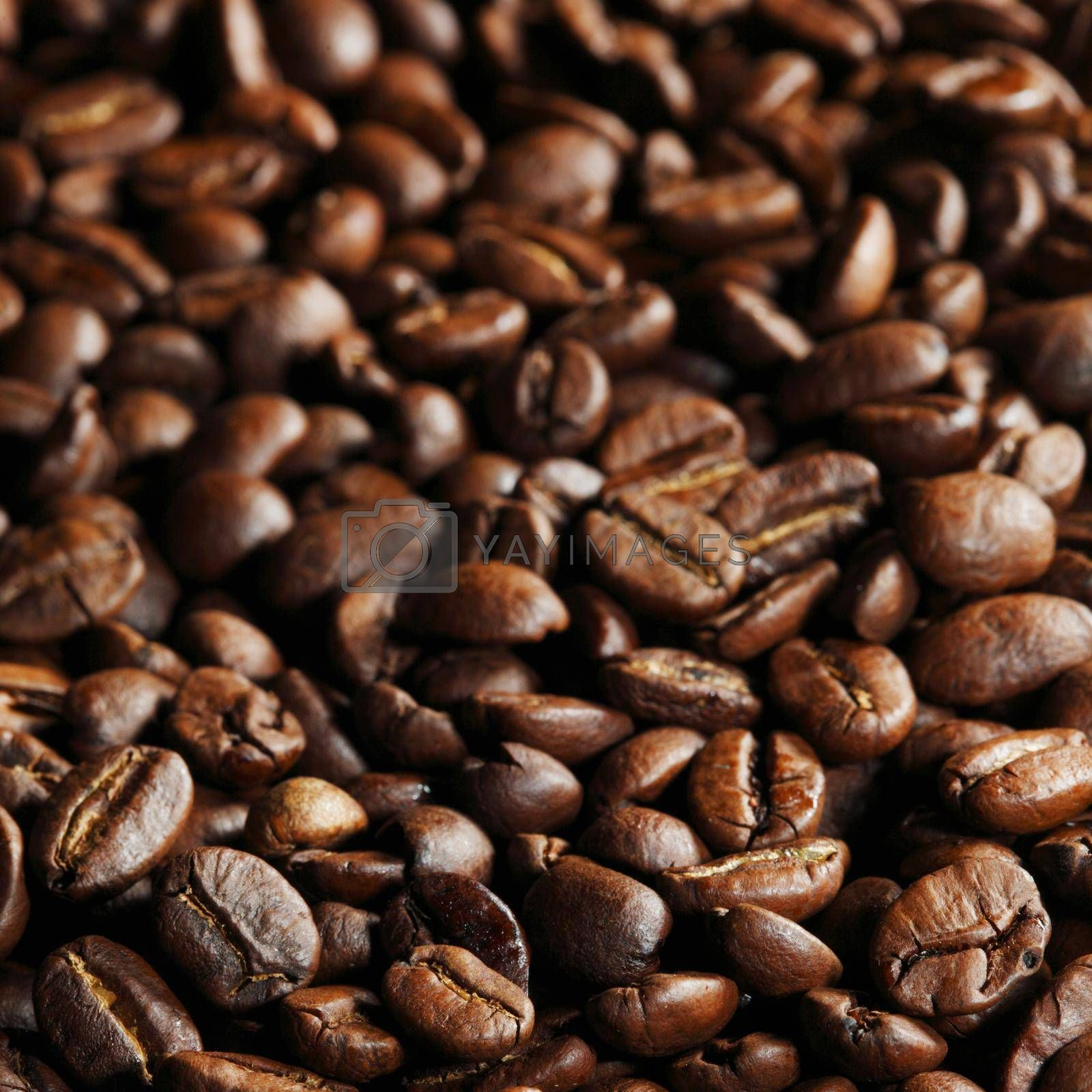 Royalty free image of Coffee beans background by Yellowj