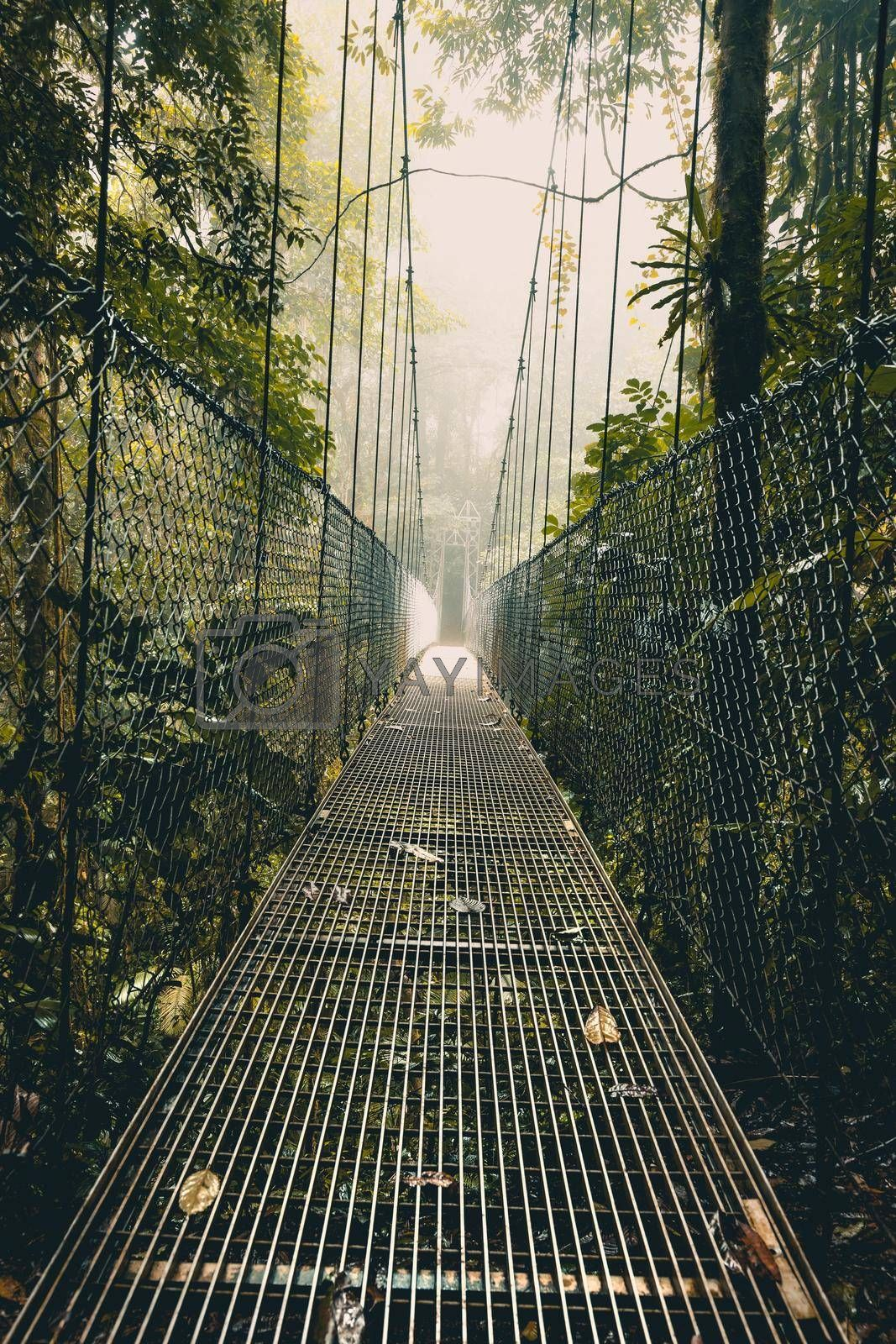 Hanging Bridge in the Forest. Rope Bridge. The Way through the Rainforest. Light in the End of a Way. Arenal Hanging Bridges. Costa Rica