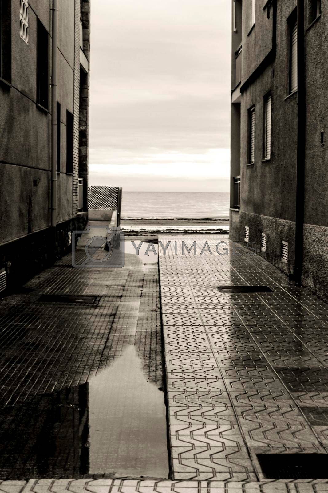 Lonely Little street between buildings facing the sea after a rainy day. Black and white Photography