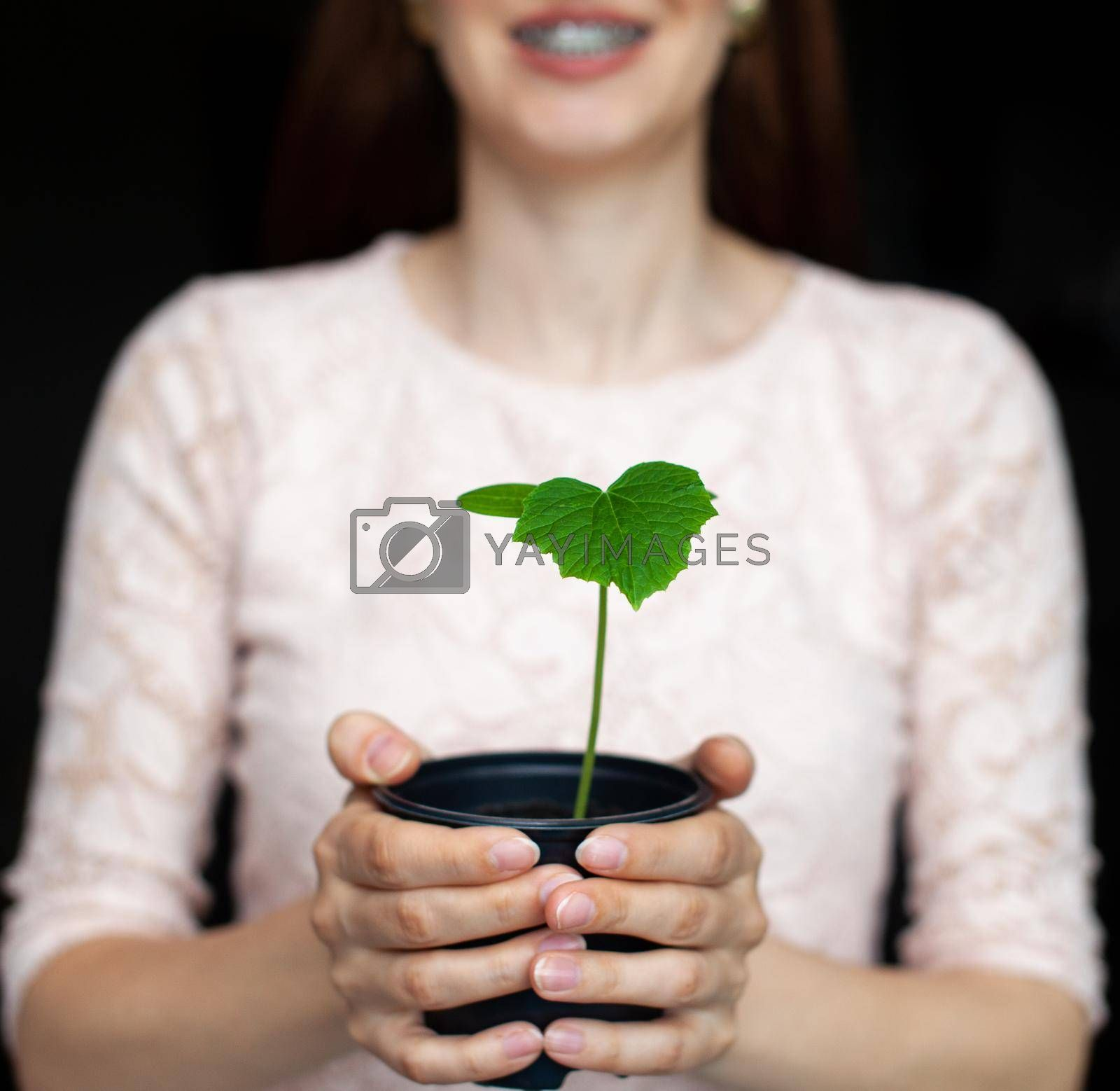 The girl is holding a black pot with a green plant on a dark background. Seedlings of cucumbers in a pot, ready for planting in the ground. Environmental protection. Respect for nature