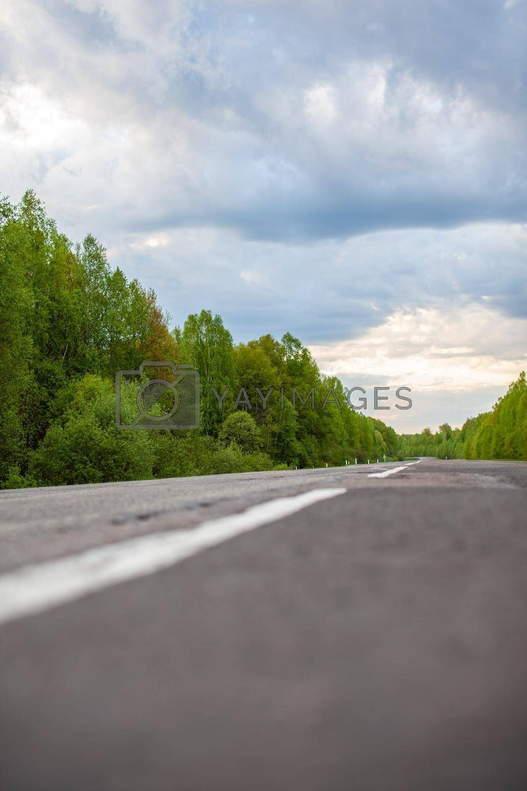 Country road with markings in the middle of the forest. Path and forward movement in the sun. Beautiful, green forest in the spring at sunset. Concept for success in the future goal and passing time