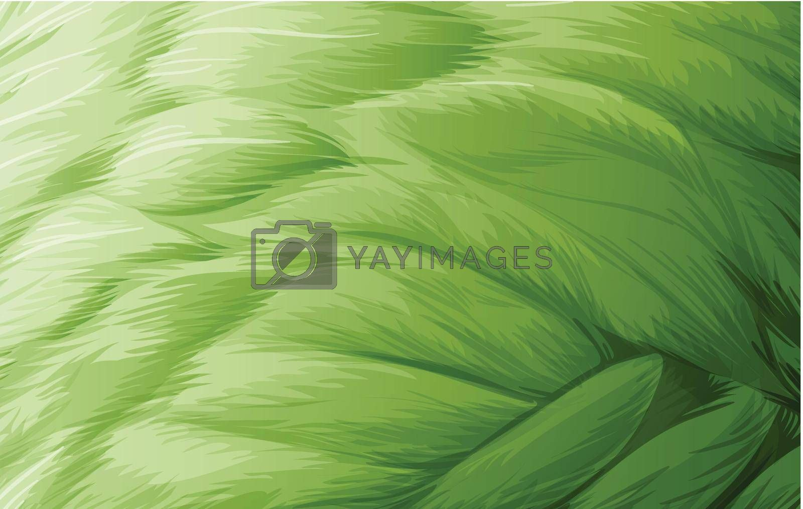 Royalty free image of A feather texture by iimages
