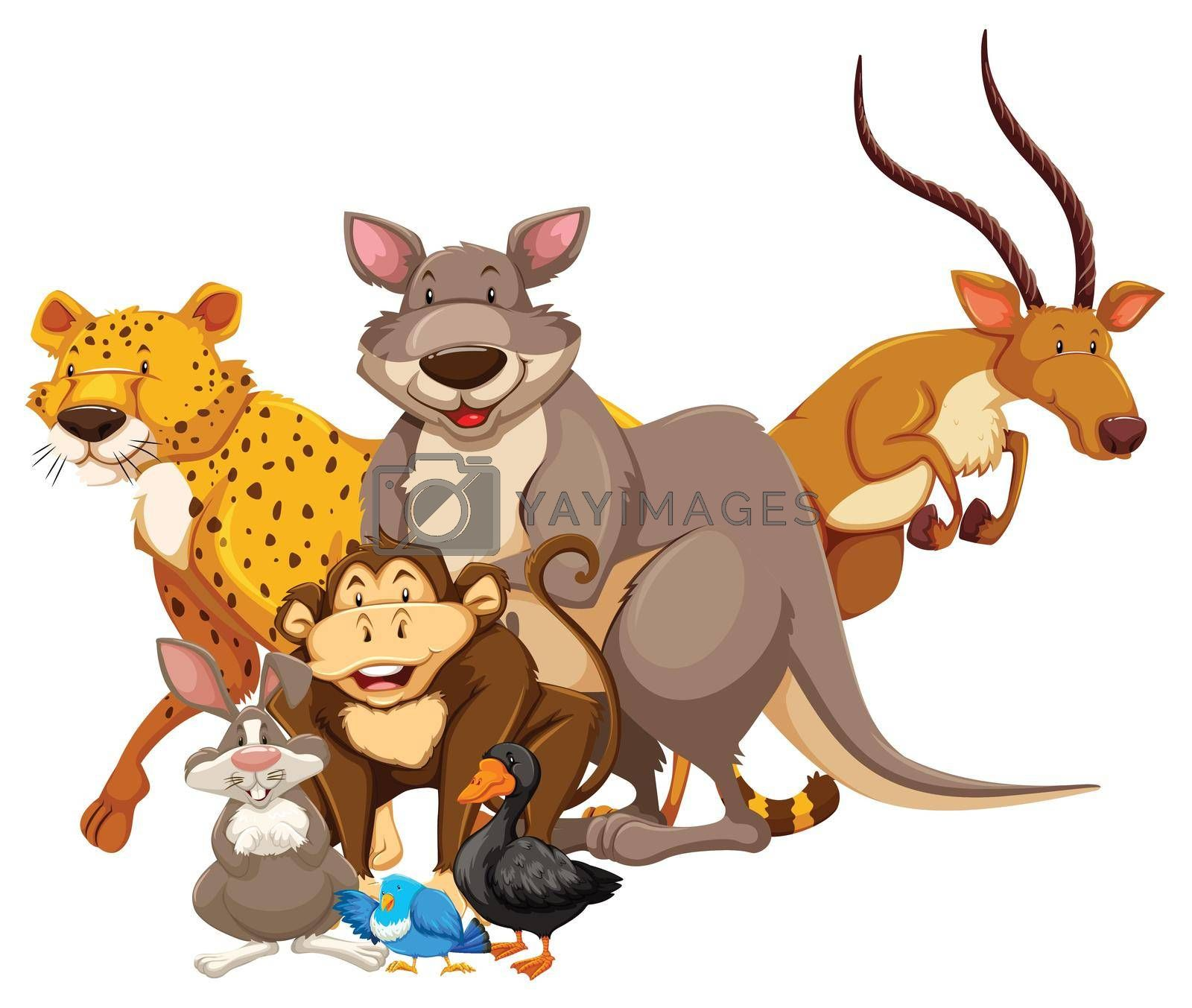 Royalty free image of Animals by iimages