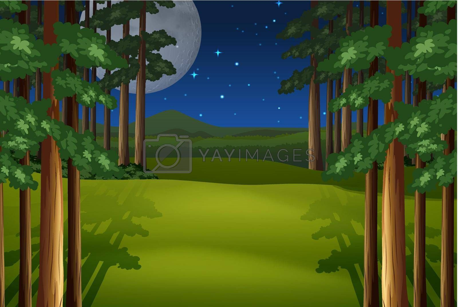 Royalty free image of Forest by iimages