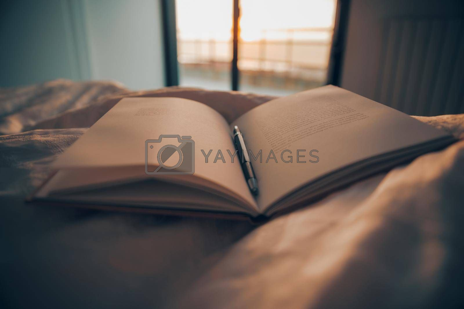 Cozy Evening at Home with a Good Book. Reading an Interesting Story. Making Remarks. Evening Chilling. Self-development Concept.