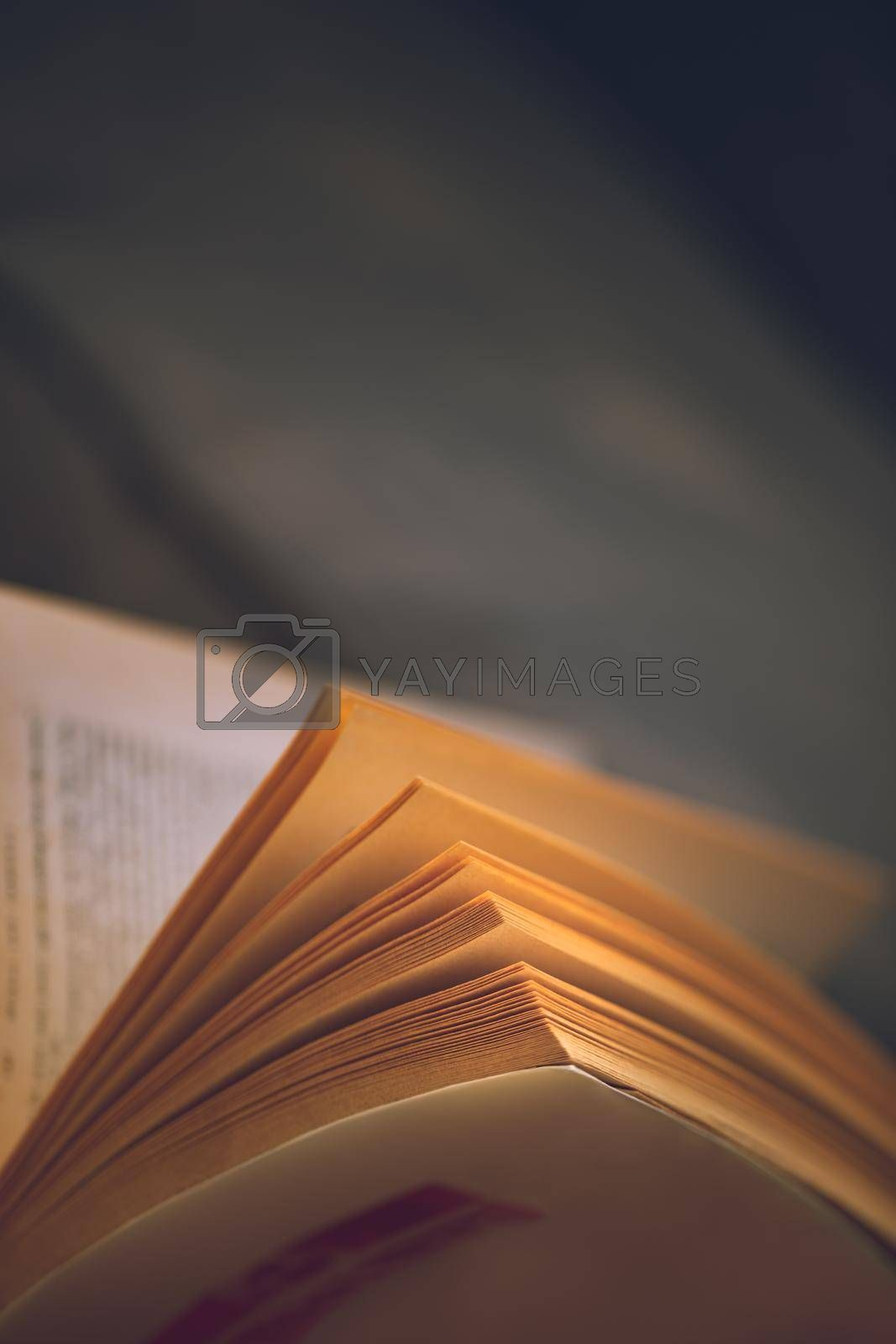 Closeup Photo of an Open Book. Reading an Interesting Detective Stories at Home. Leisure Time. Home Schooling. Self Education.