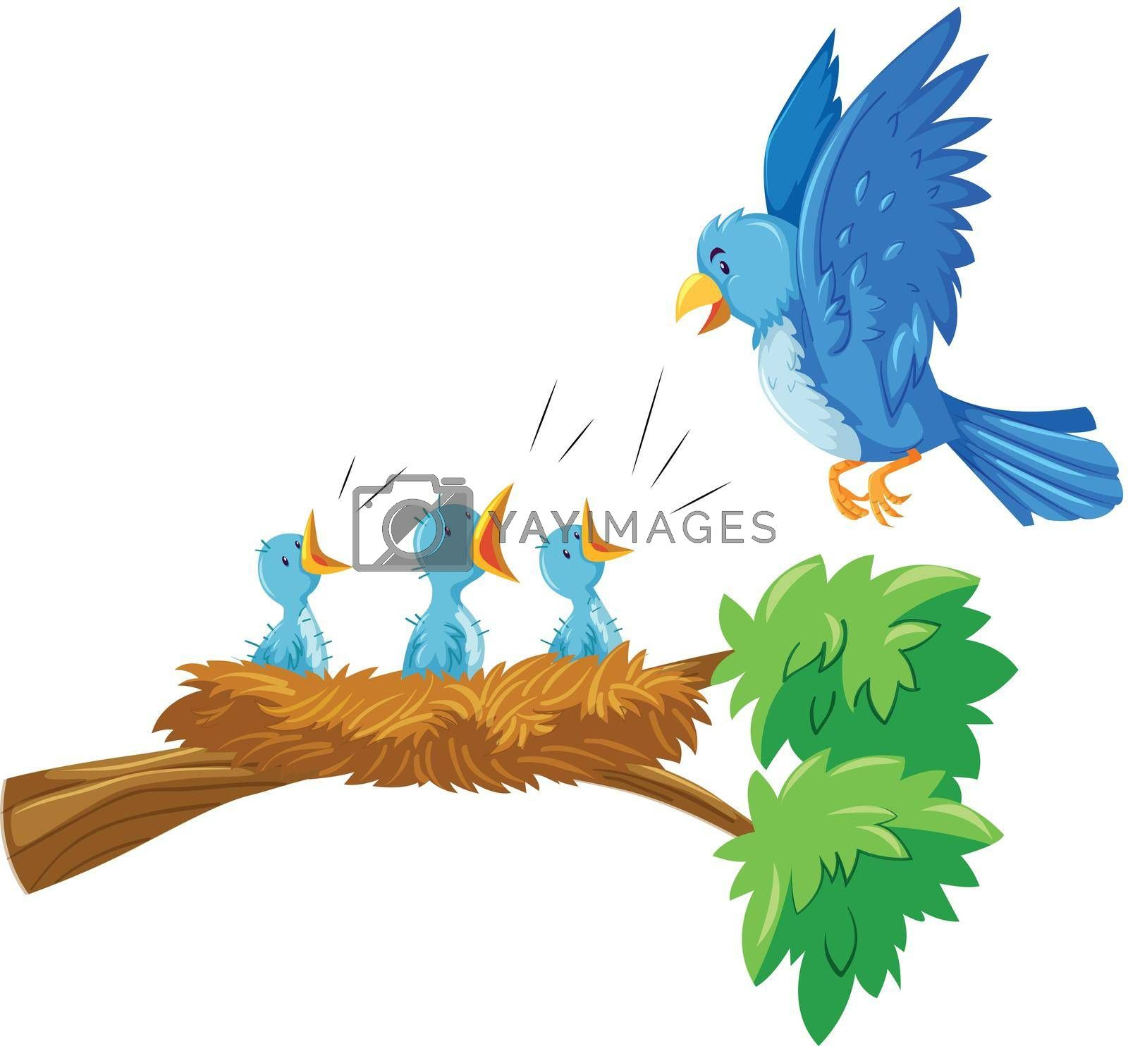 Royalty free image of Mother and babies bird on the branch by iimages