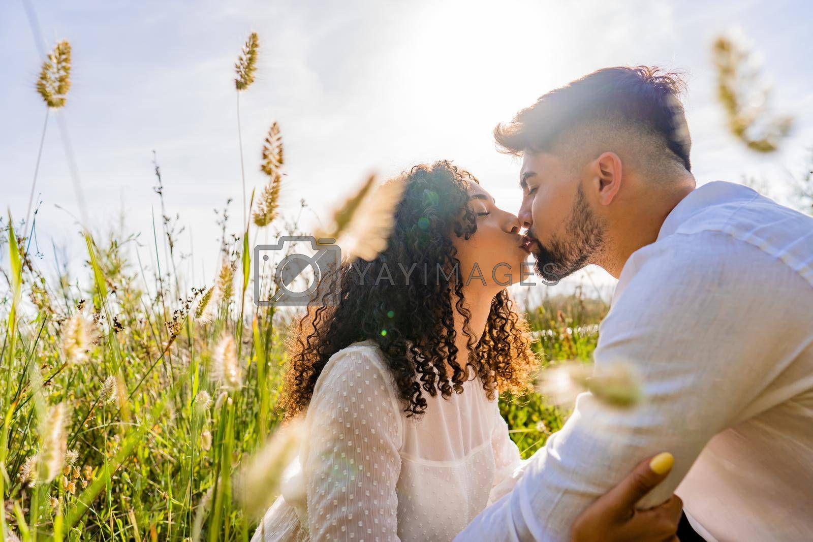 Royalty free image of Romance scene of mixed-race couple in love kissing in backlight effect among flowers and high grass with flare and reflection sun effect at sunset or sunrise. Bearded macho young man flirting by robbyfontanesi