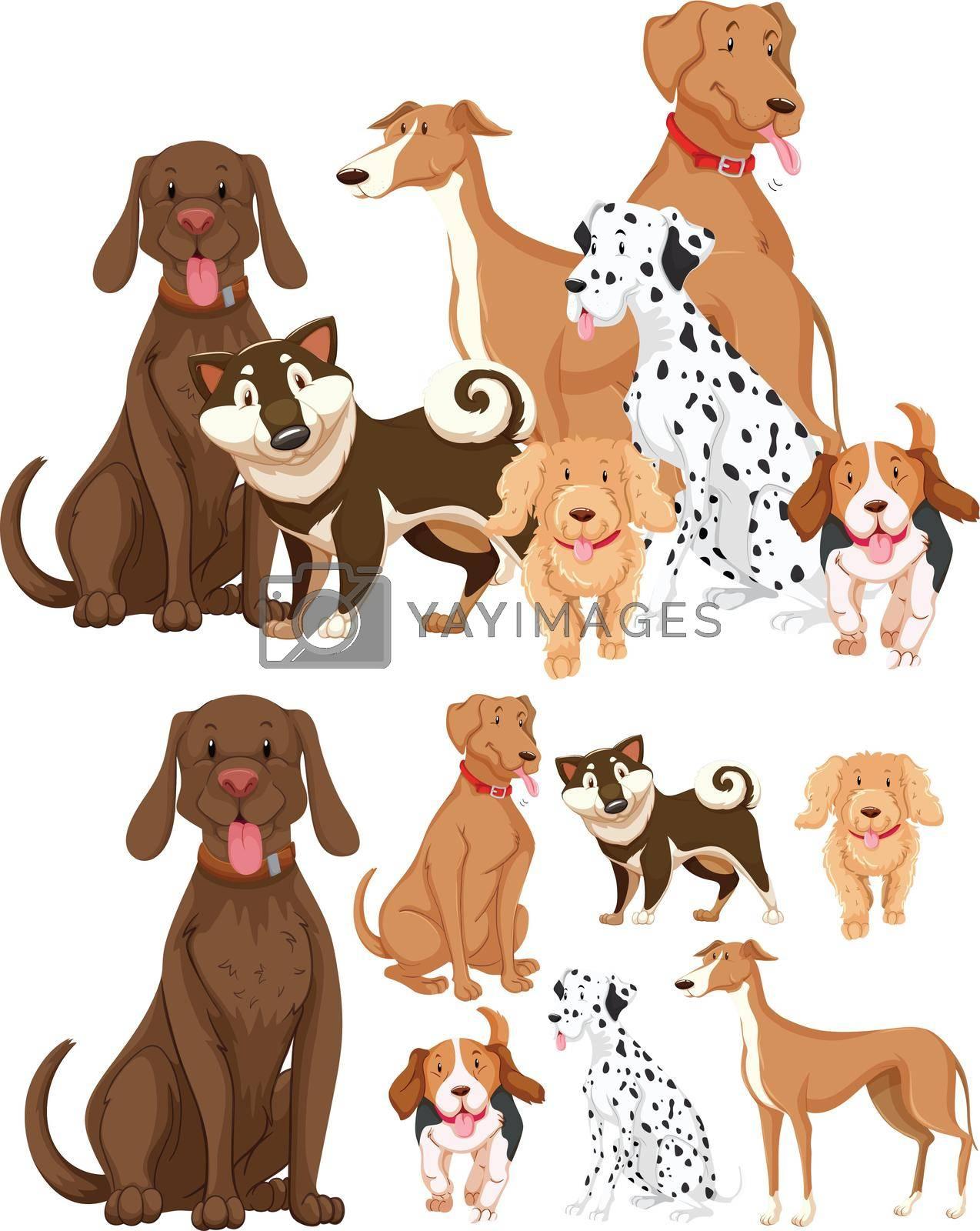 Many types of dogs illustration