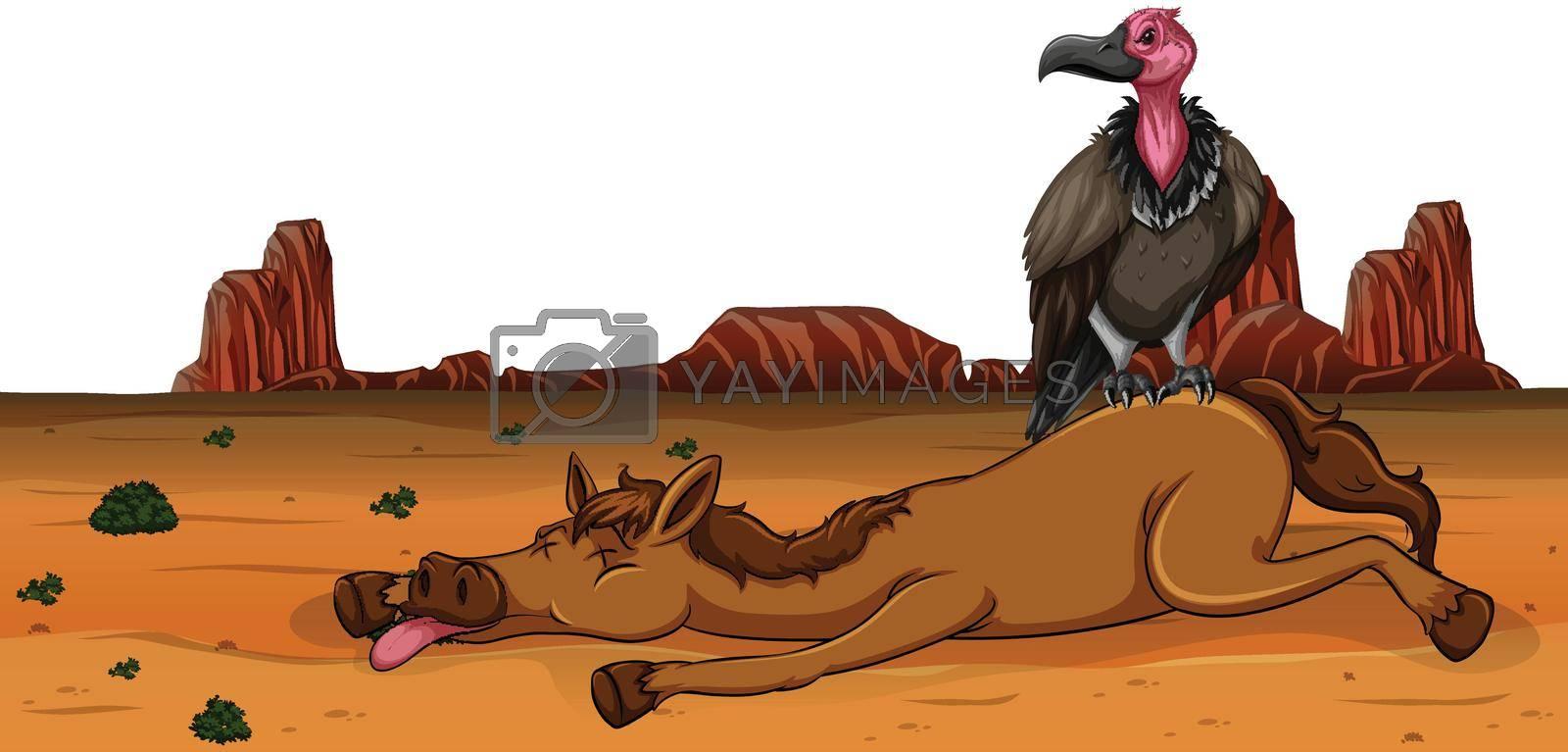 A vulture on dead horse illustration