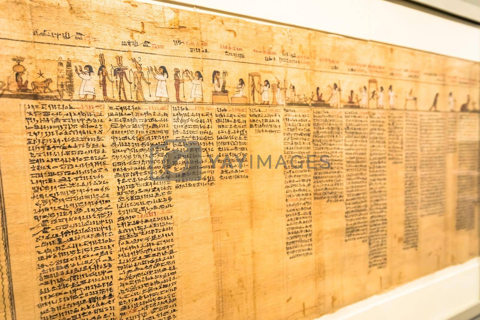 Royalty free image of Ancient Egyptian papyrus with hieroglyphic. Antique manuscript. by Perseomedusa