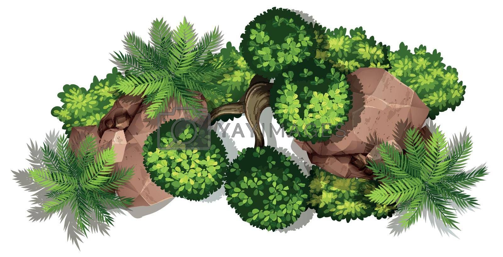 Aerial view of plants and rocks illustration